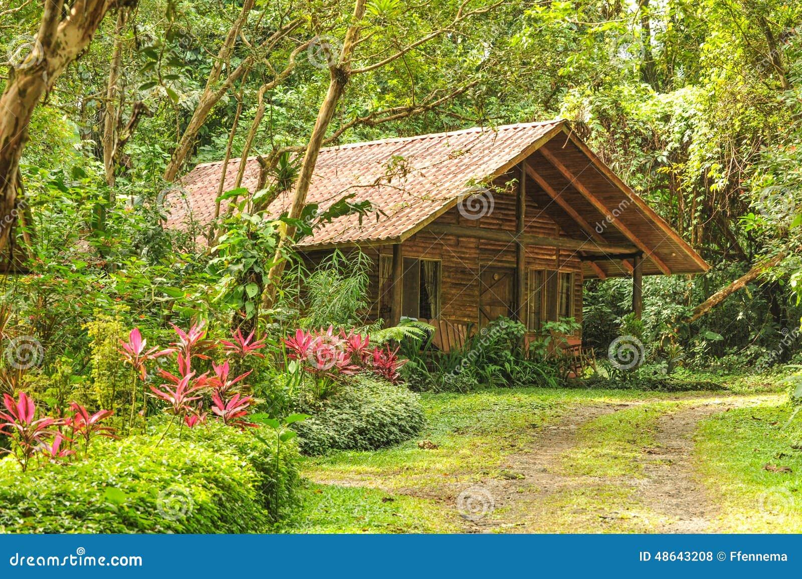 Cabane en rondins en bois dans une for t tropicale tropicale photo stock im - La maison au milieu des bois ...