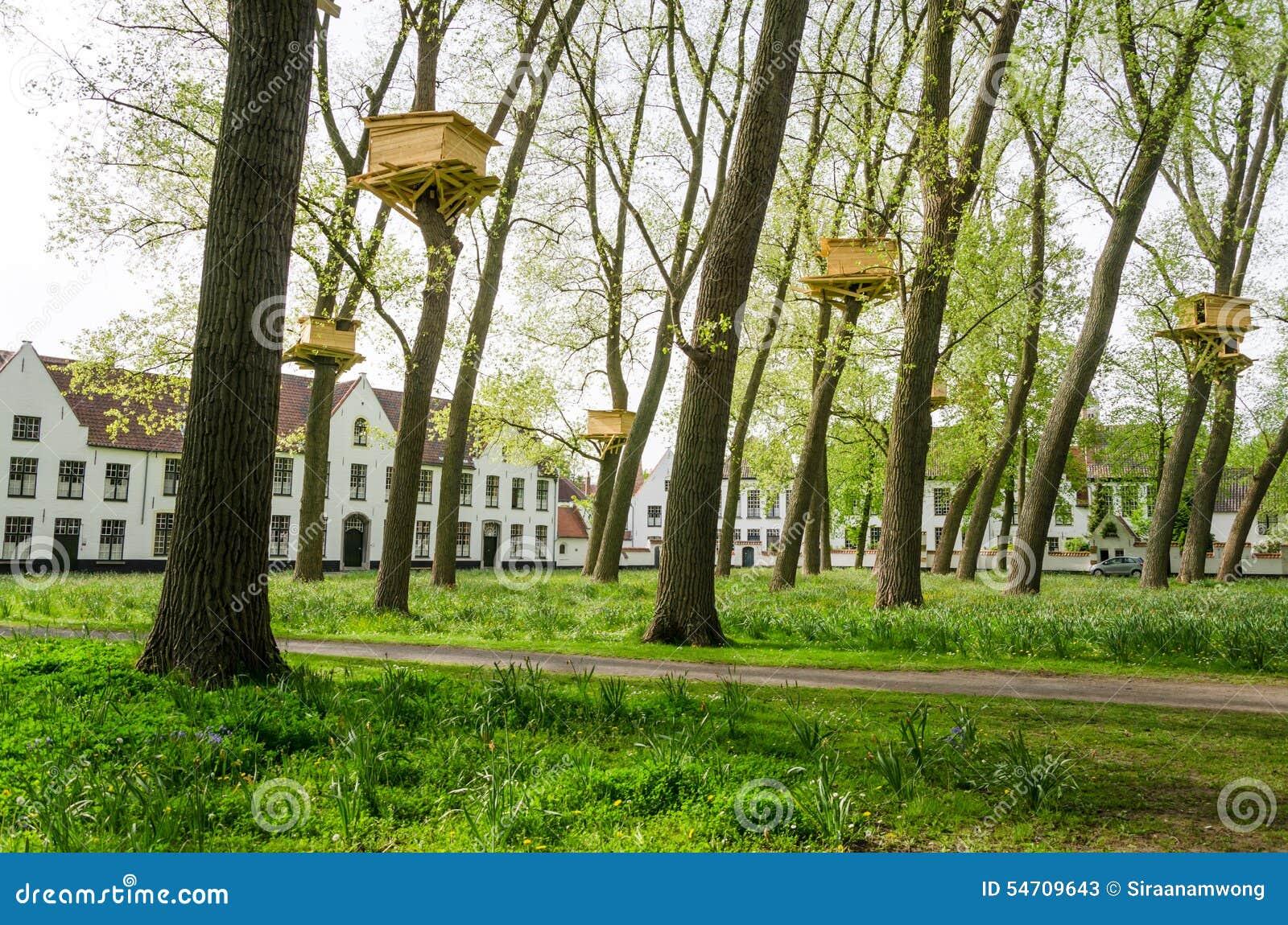 Cabanes dans un arbre dans le jardin de beguinage bruges for Cabane de jardin belgique