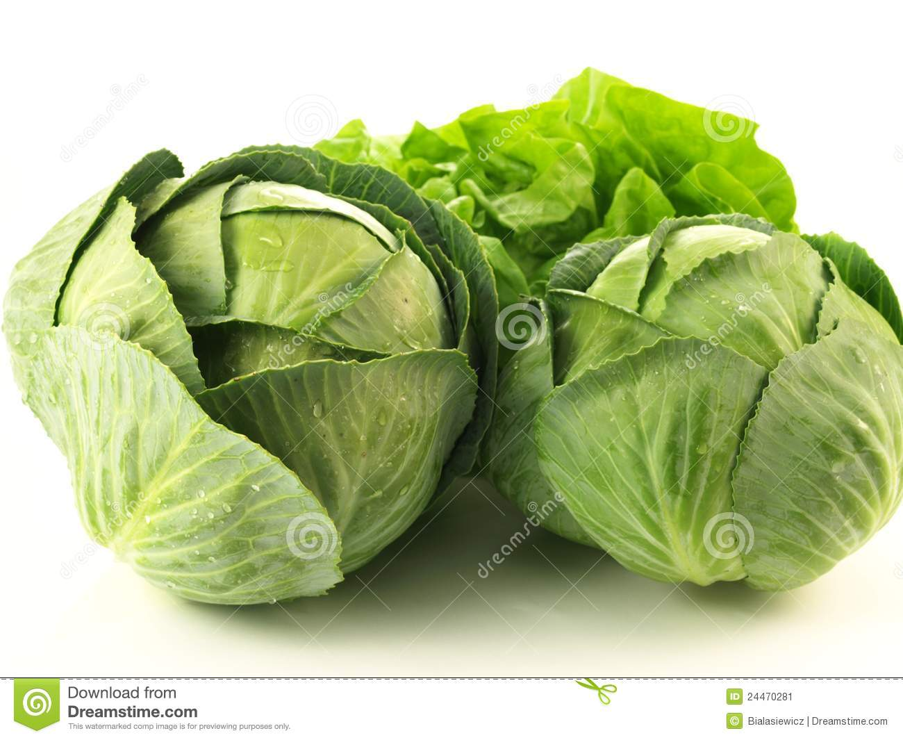"cabbage vs lettuce Even more so than its cousin kale, the humble romaine lettuce packs high levels of folic acid,  rich sources of highly-available calcium and iron, cruciferous vegetables like the cabbage have the powerful ability to ""turn off"" inflammation markers thought to promote heart disease."
