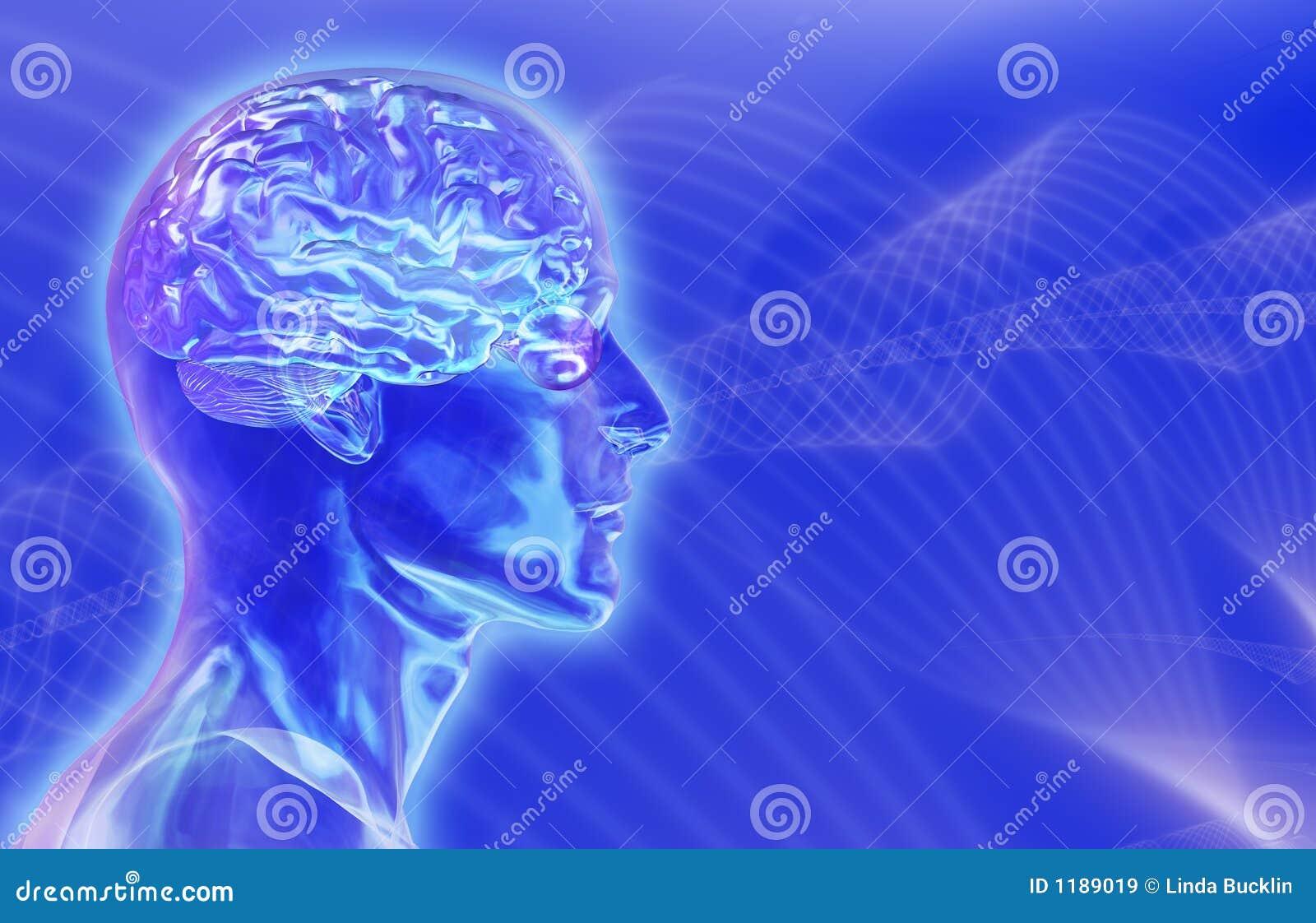 Cabeça masculina de vidro com o cérebro no fundo dos Brainwaves