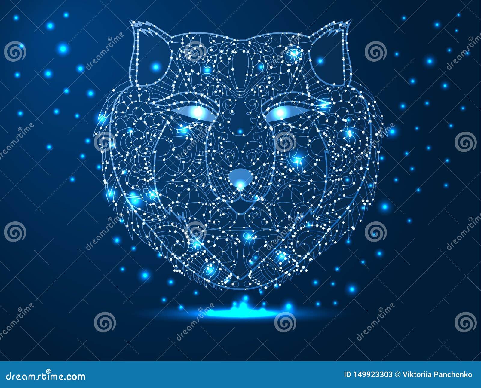 Cabe?a de um lobo, ca?ador, animal Ilustra??o poligonal abstrata em escuro - fundo azul com as estrelas com formas do destruct