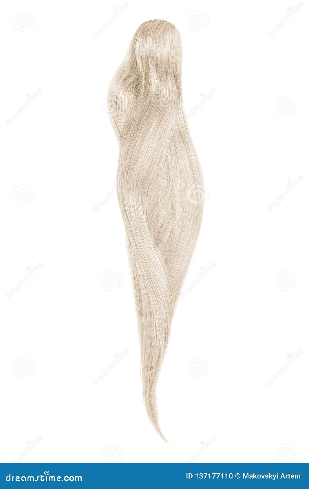 Cabelo cinzento, isolado no fundo branco Rabo de cavalo bonito longo
