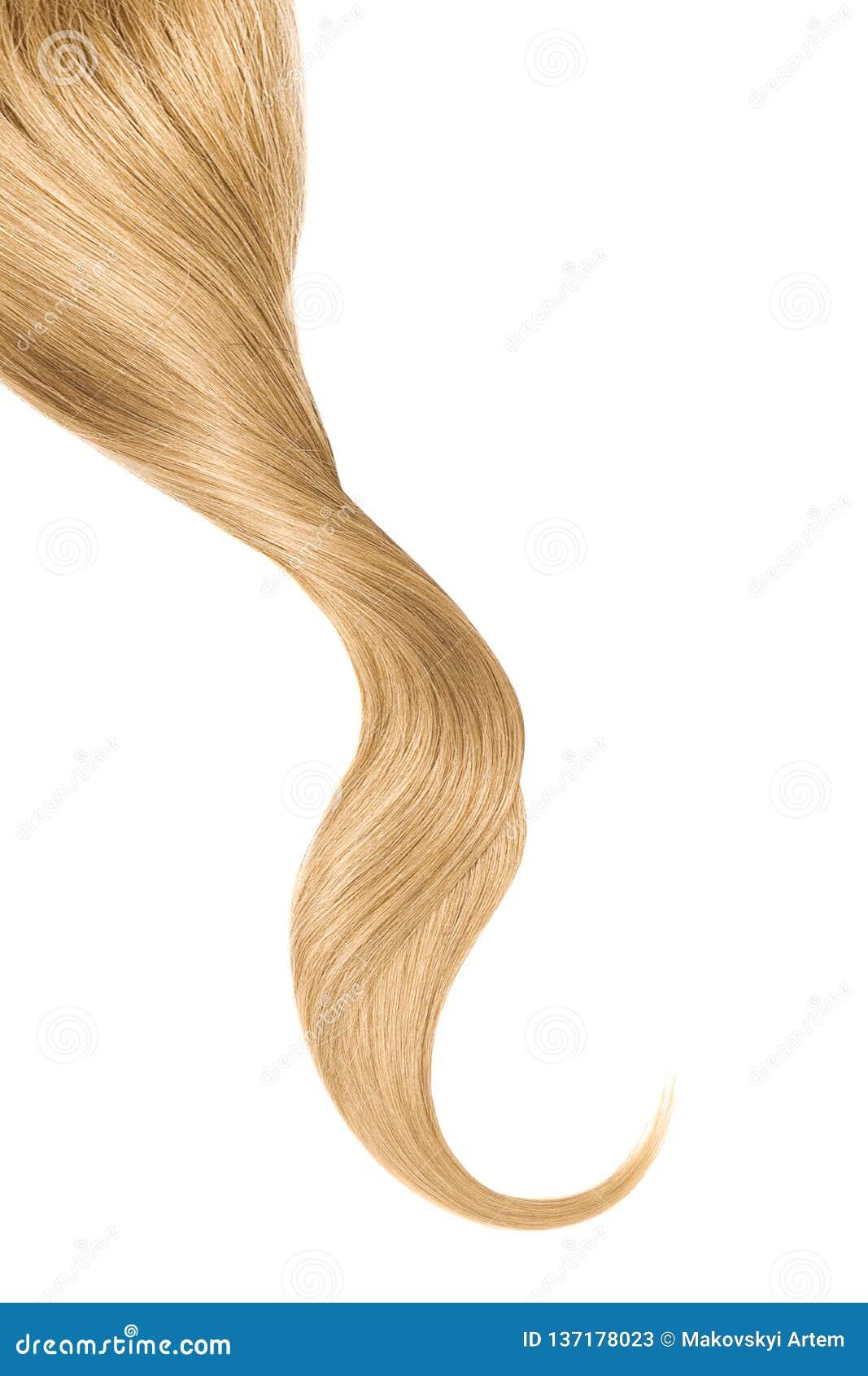 Cabelo louro, isolado no fundo branco Rabo de cavalo ondulado longo
