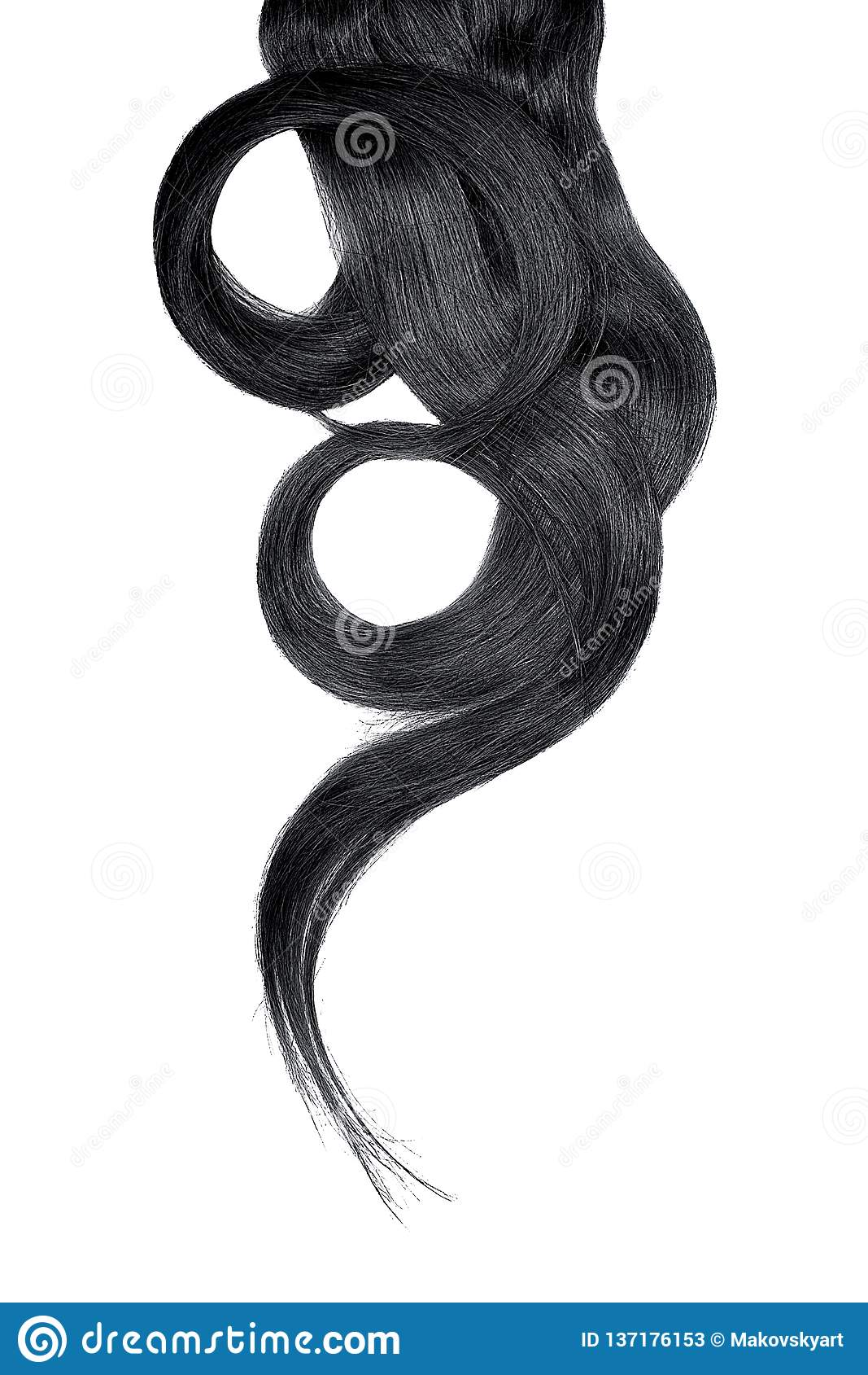 Cabelo preto isolado no fundo branco Rabo de cavalo bonito longo na forma do círculo