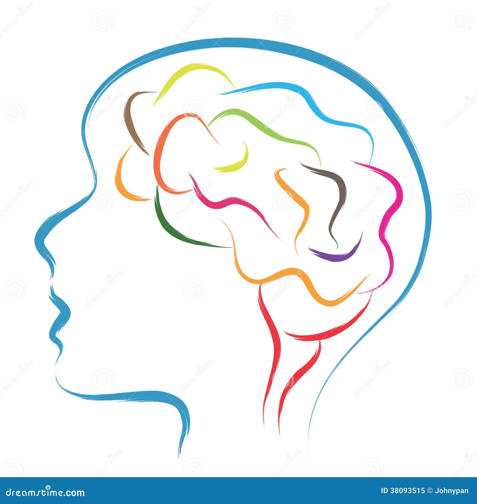 Cabeza y cerebro