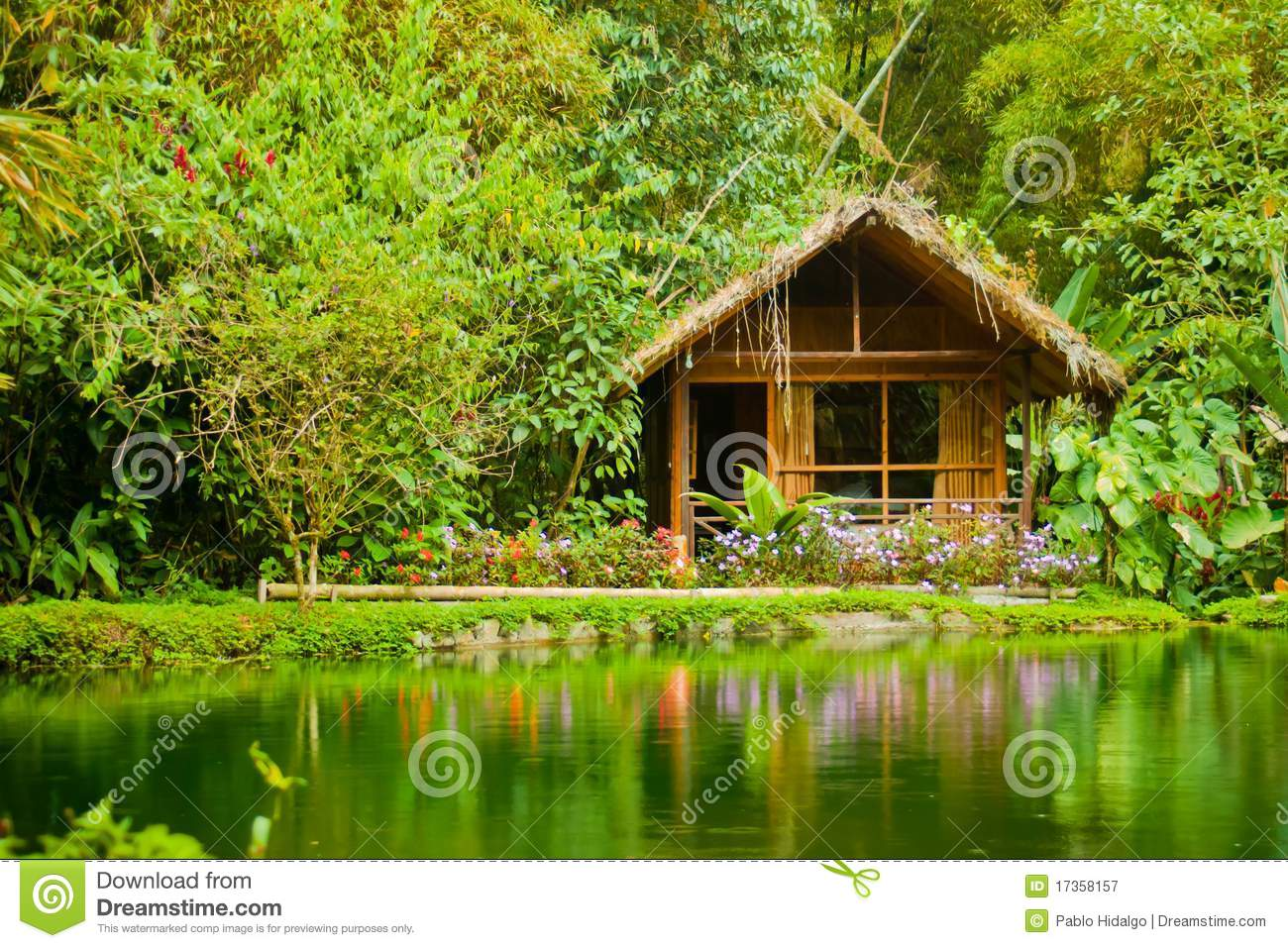 Cabin in the jungle stock image. Image of home, peeling