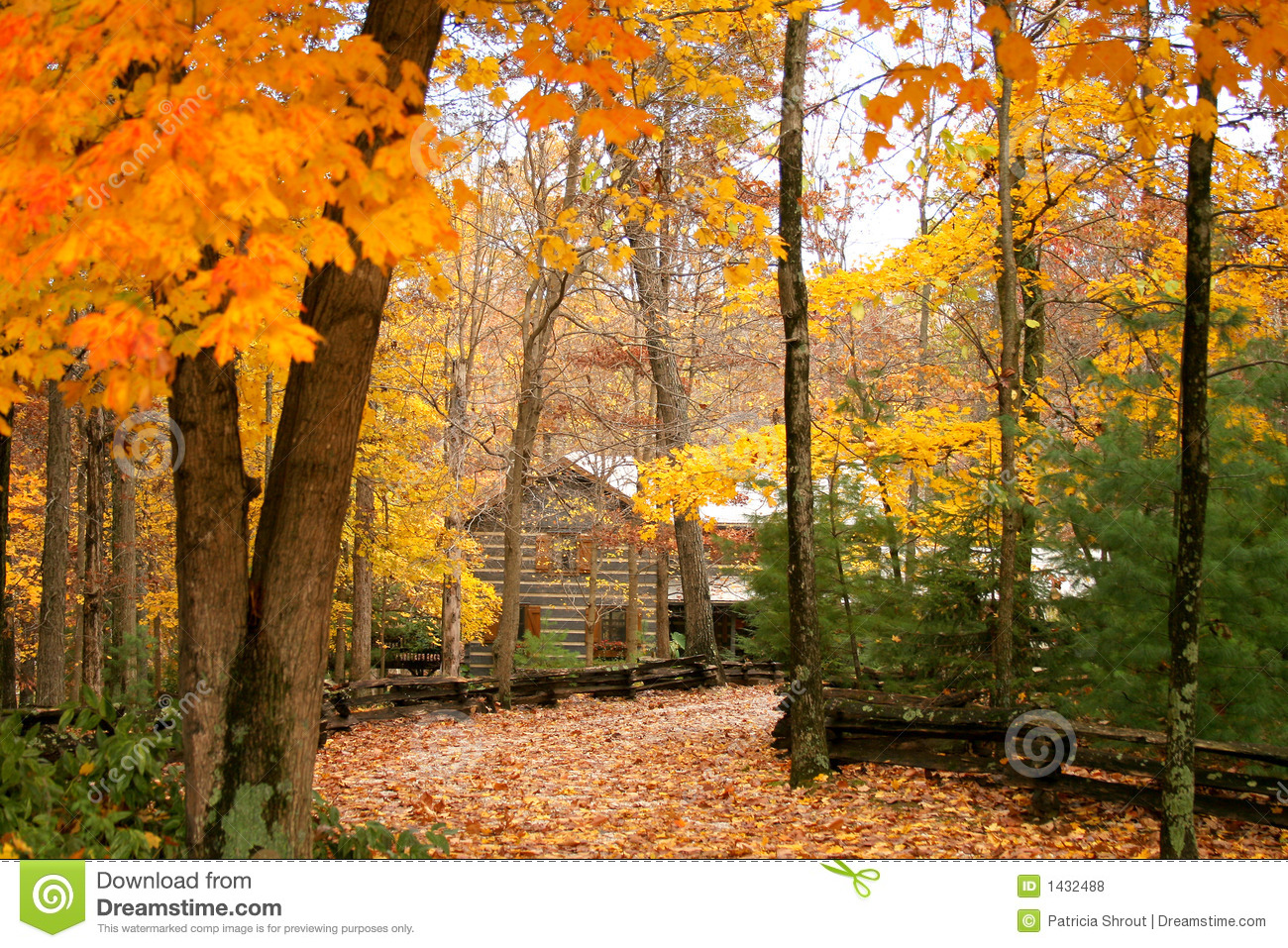 Cabin in the woods with autumn