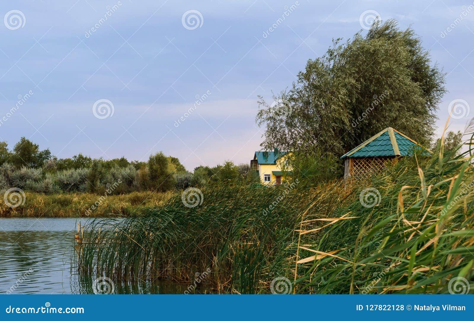 Cabina de madera cerca del borde de un pequeño pequeño río o charca en medio del follaje enorme que acerca a puesta del sol