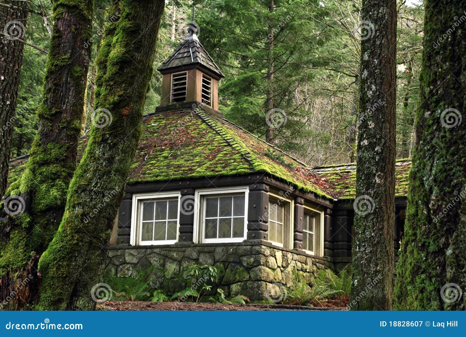 Cabina muscosa della pietra del paese nel legno immagine for Planimetrie della cabina del fienile