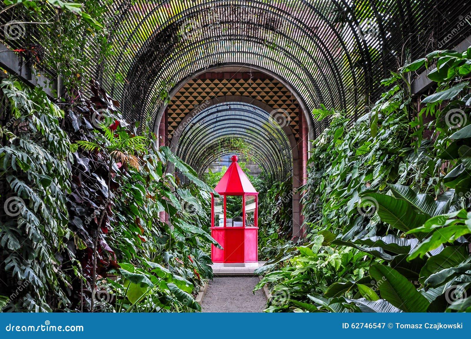 Cabina roja en jard n bot nico en puerto de la cruz imagen de archivo imagen de t nel isla - El botanico puerto de la cruz ...