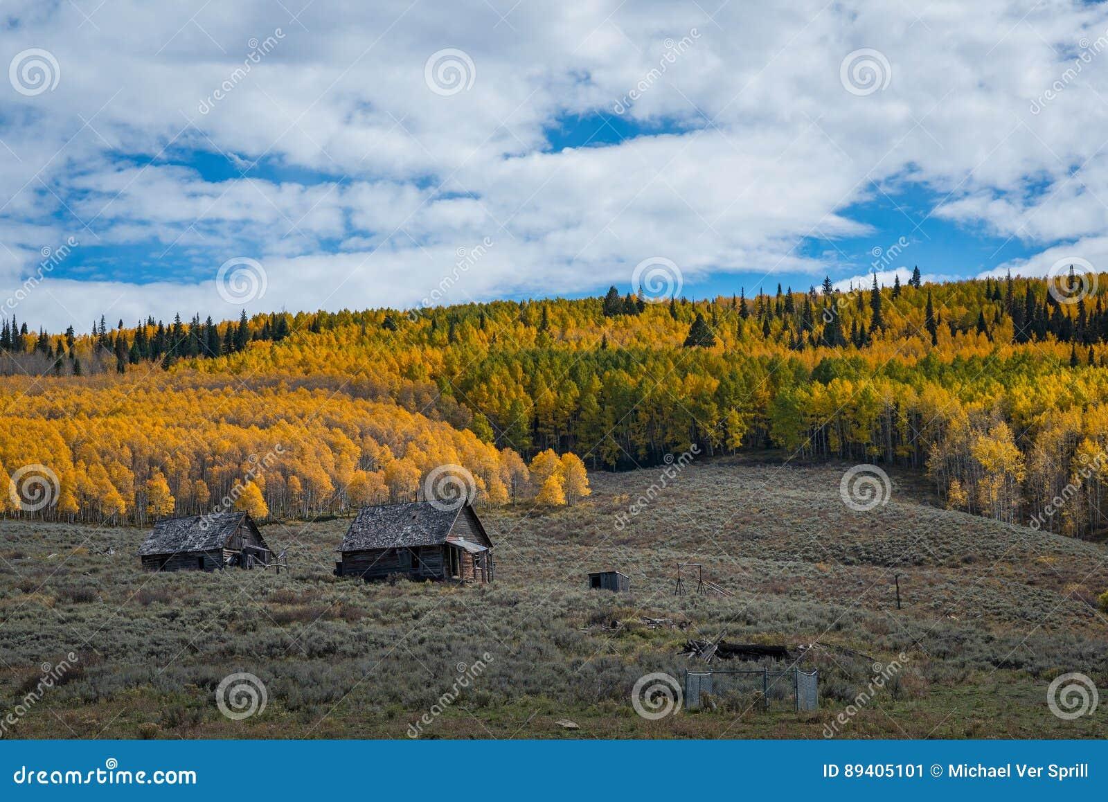 Cabine abandonada perto de Aspen Trees em Colorado