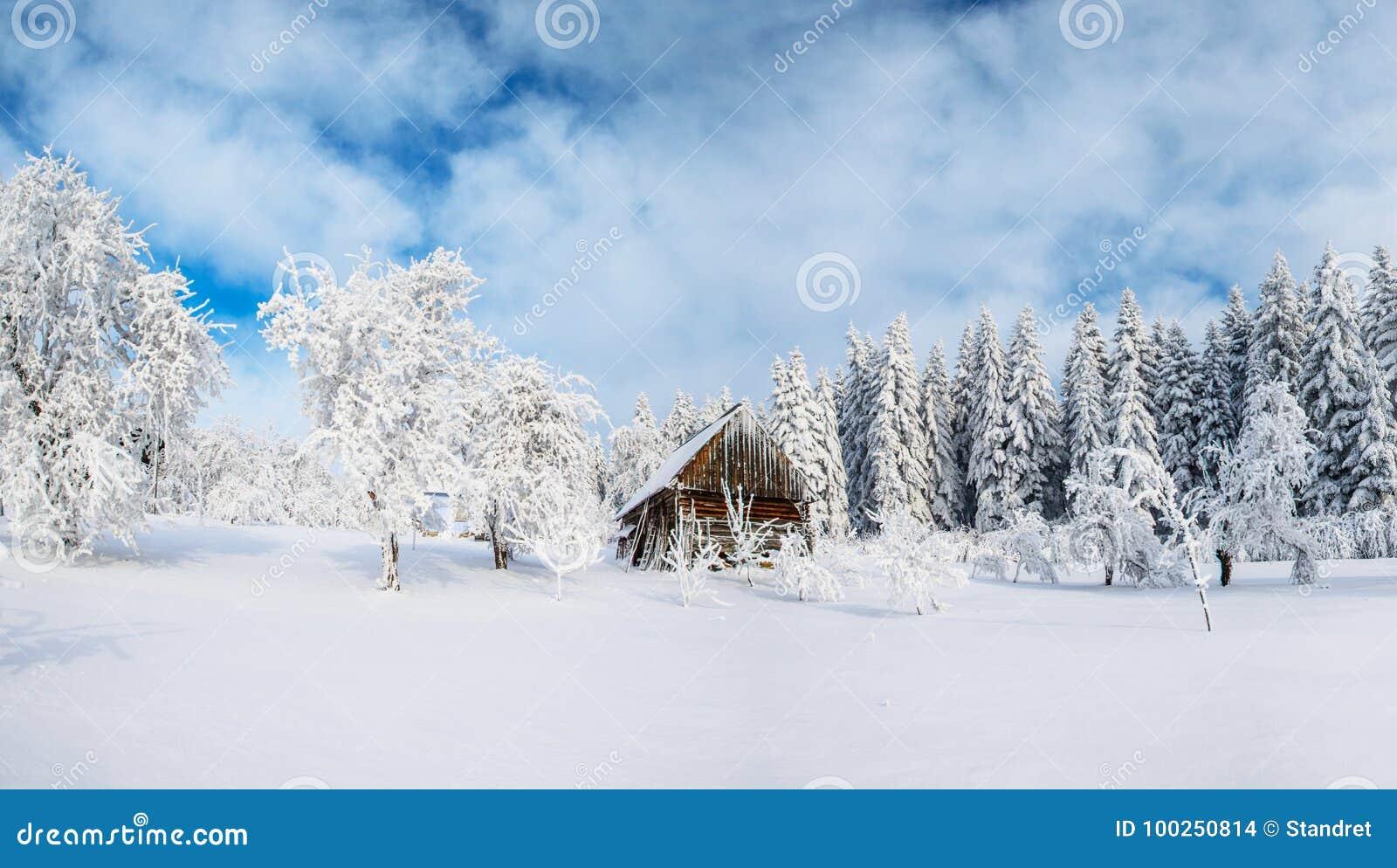 Cabine nas montanhas no inverno Névoa misteriosa Em antecipação aos feriados carpathians Ucrânia, Europa