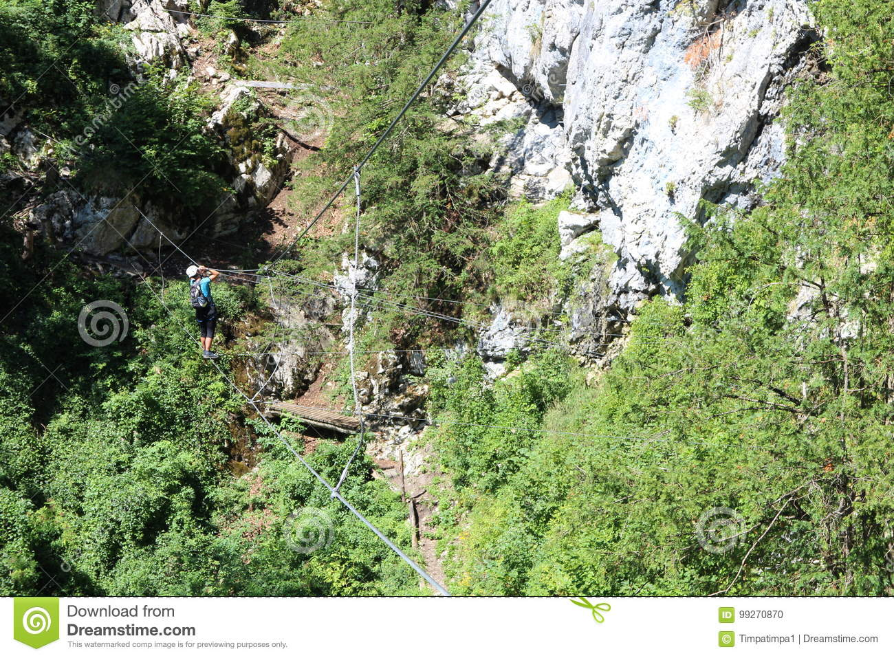 Klettersteig Clipart : Cable bridge and ladder in via ferrata trattenbacher klettersteig