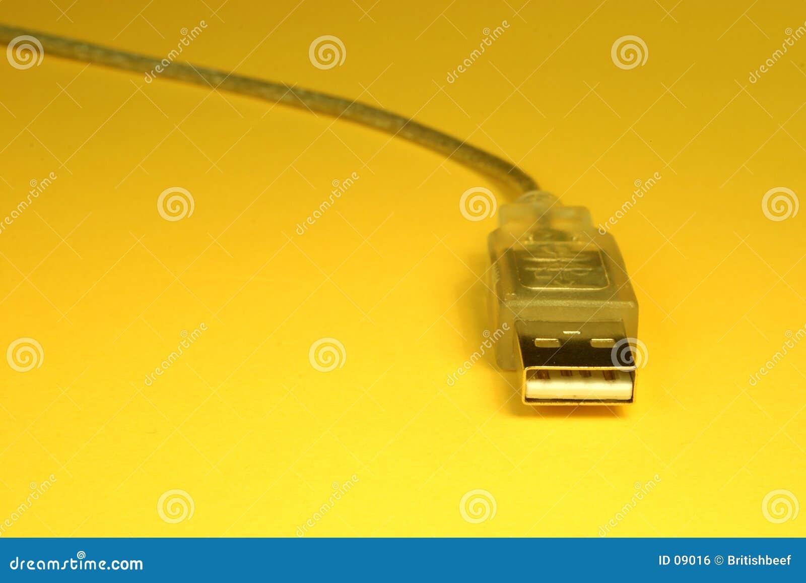 Cable del USB