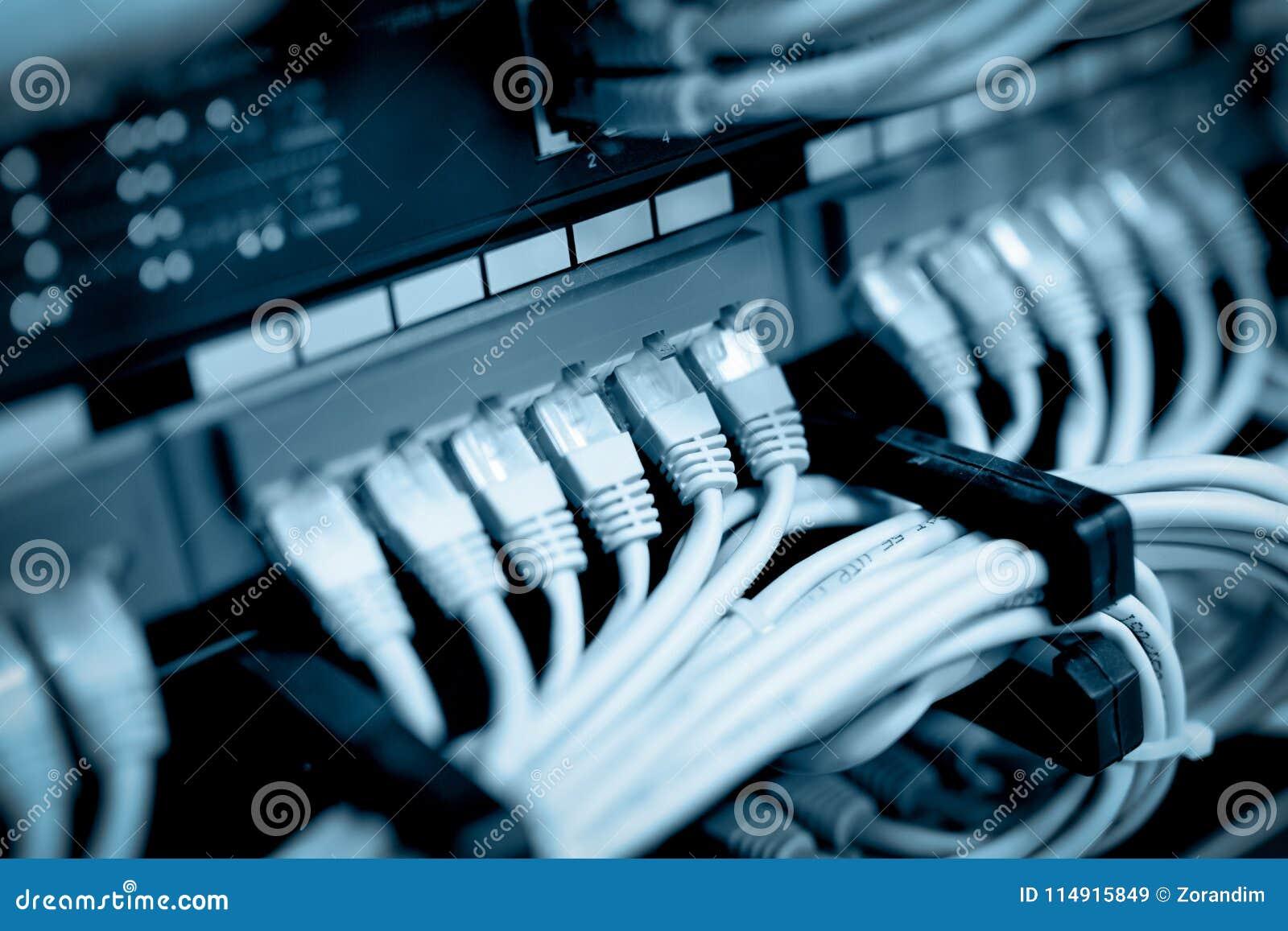 Cabos da rede conectados em interruptores de rede