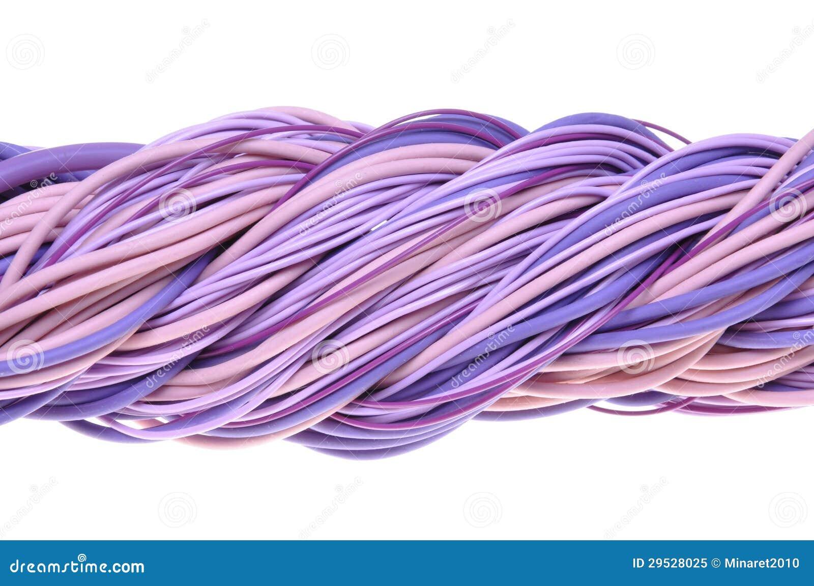 Cabos violetas torcidos do computador de rede