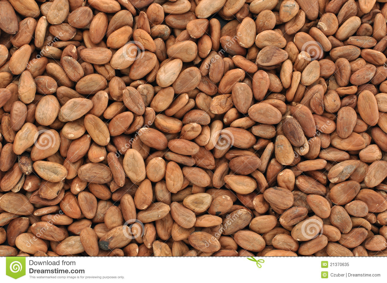 Cacao Beans Royalty Free Stock Photo - Image: 21370635