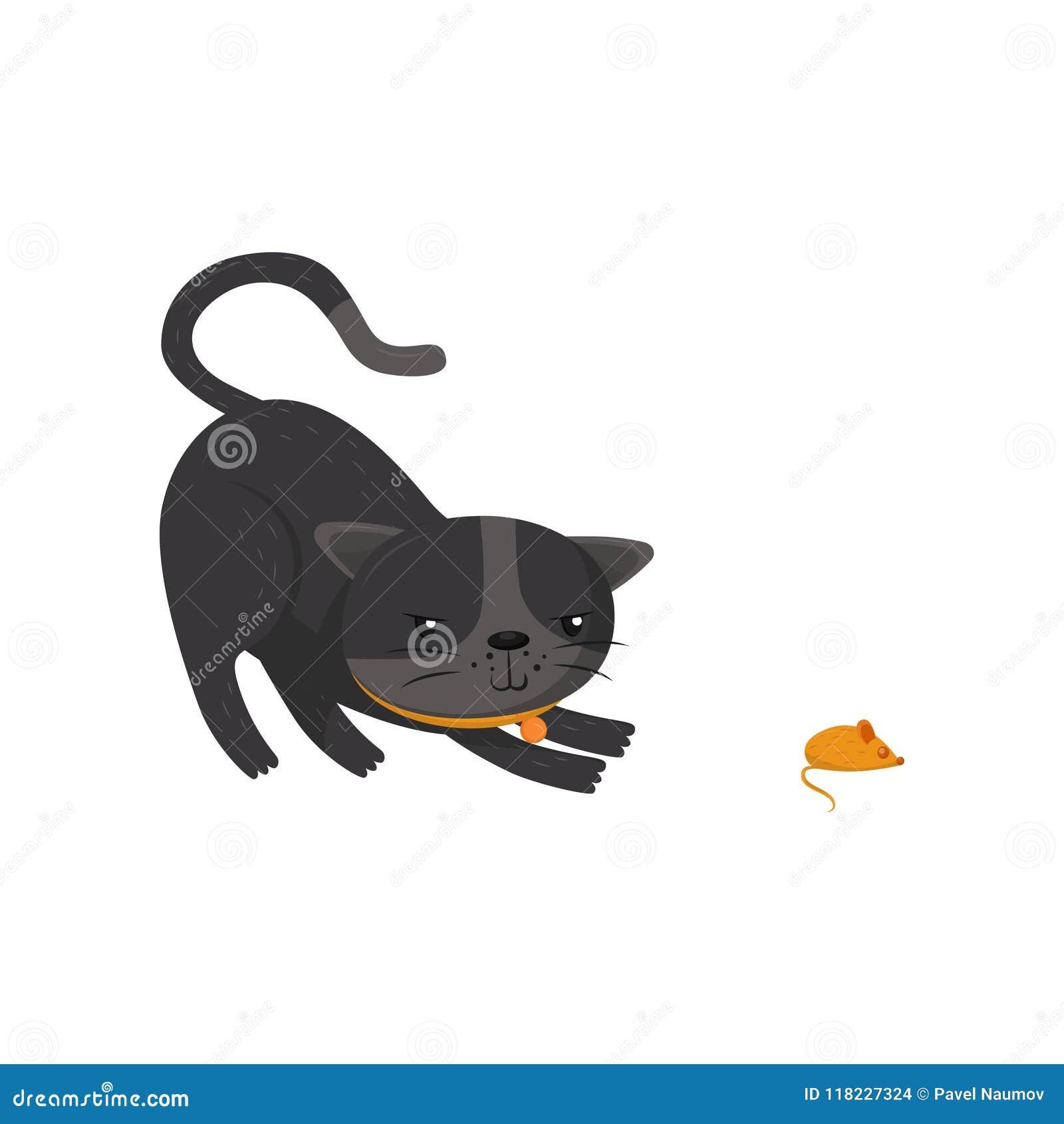 Gatto cane letti animali domestici materassini lettini cartoni