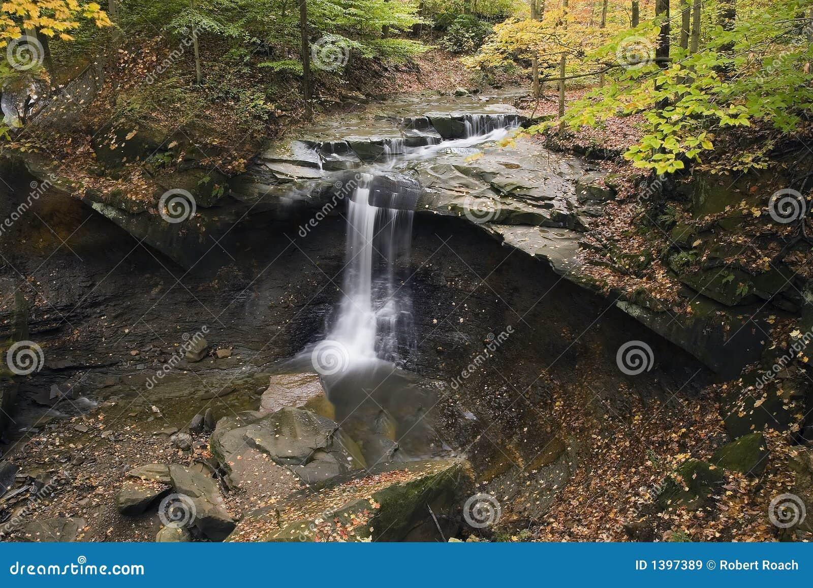 Cachoeira bonita com folhas caídas e as árvores coloridas