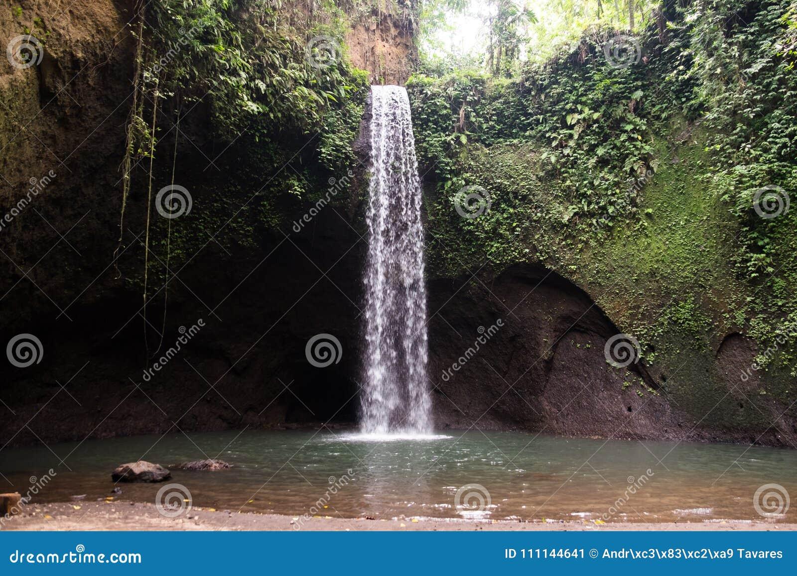 Cachoeira bonita de Sekumpul - Bali, Indonésia