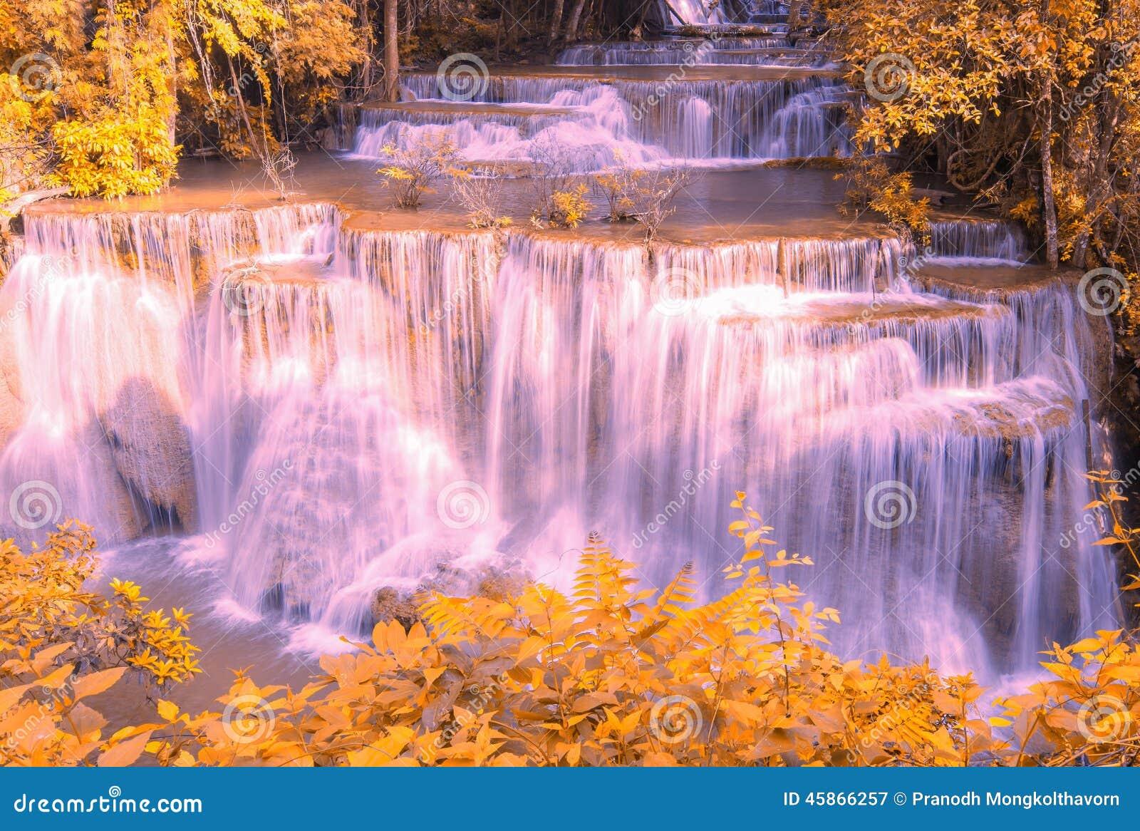 Cachoeira bonita na floresta do outono