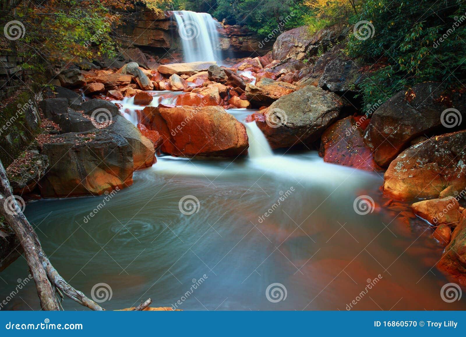 Cachoeira colorida na floresta