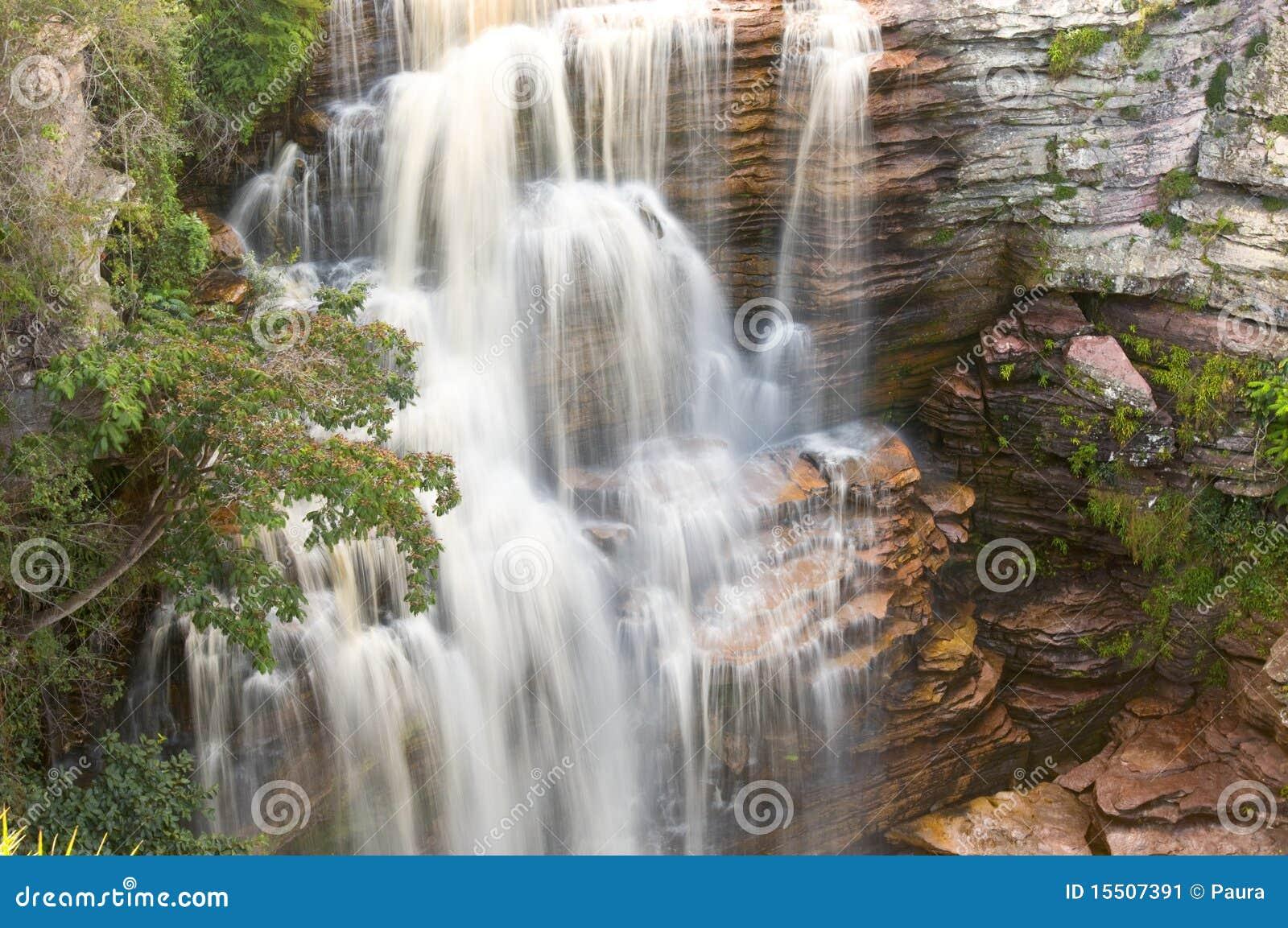 Cachoeira da selva
