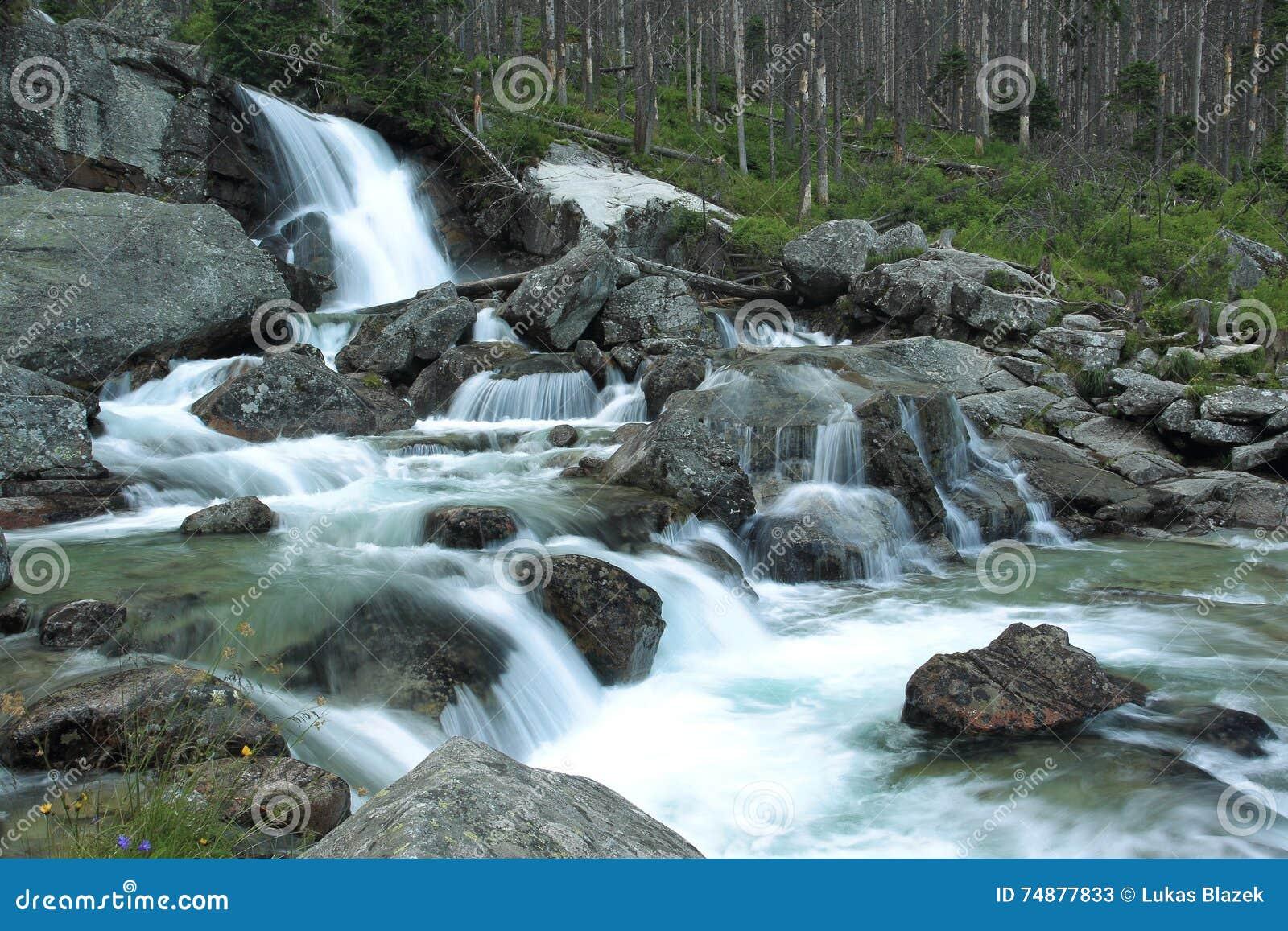 Cachoeira do ribeiro frio