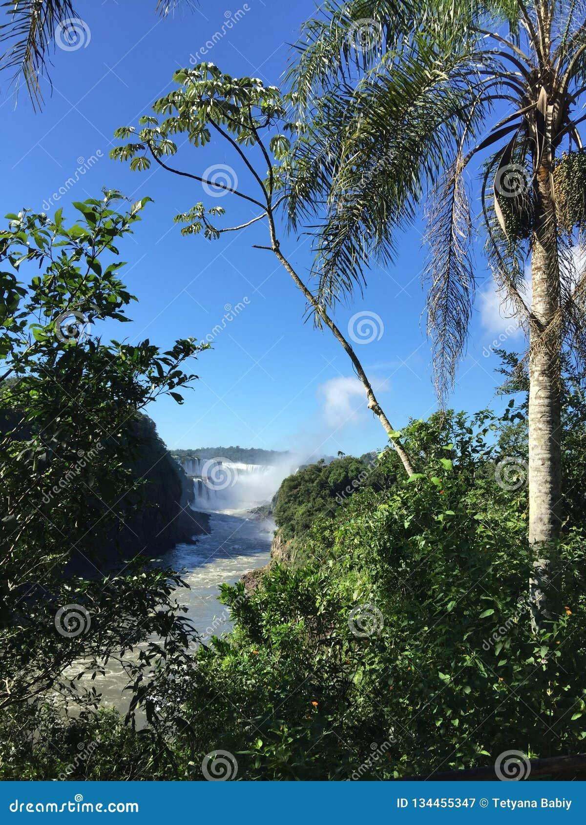 A cachoeira a maior no mundo - lado de Foz de Iguaçu Argentina