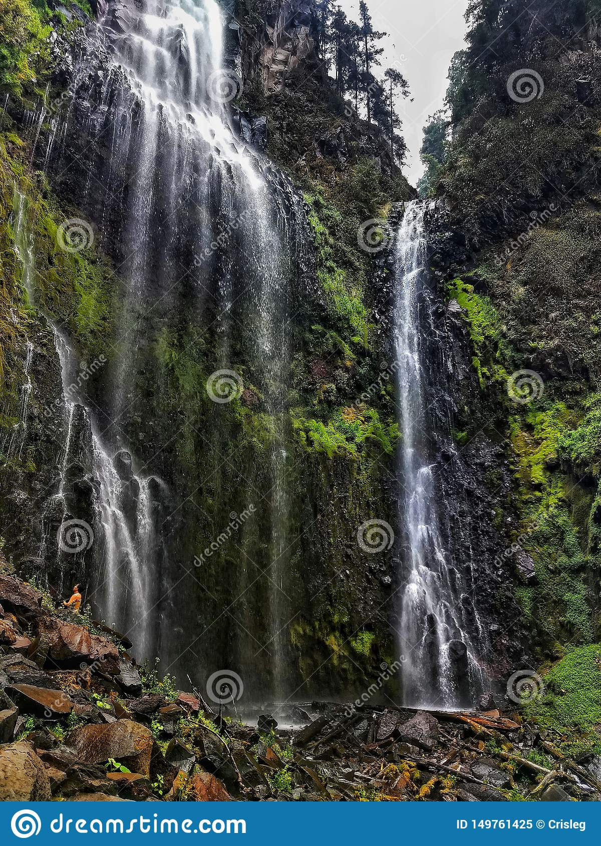 Cachoeira majestosa na floresta úmida de Cidade do México