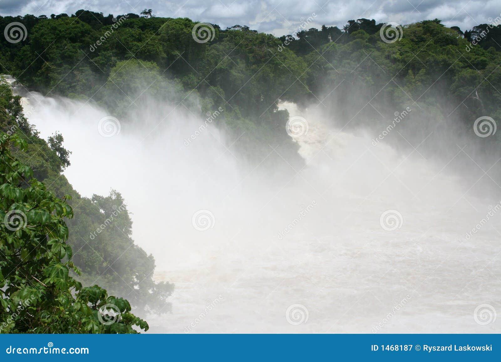 Cachoeira nos tropics