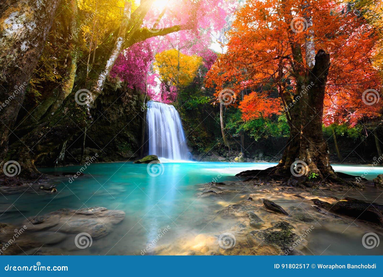 Cachoeira profunda da floresta
