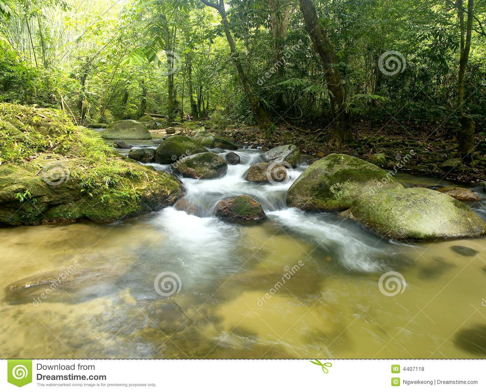 Cachoeira tropical da montanha