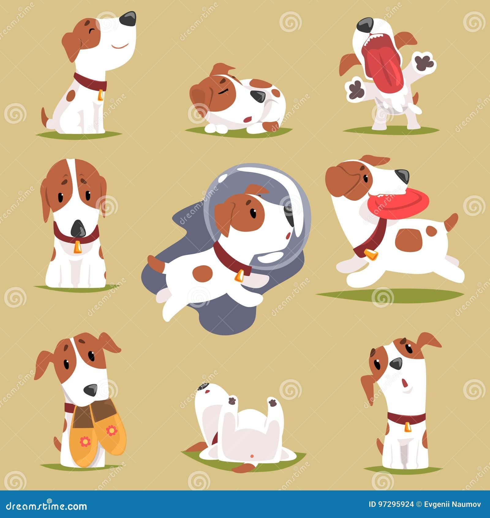 Cachorrinho pequeno bonito em seu grupo evereday da atividade, caráter colorido engraçado rotineiro diário dos cães