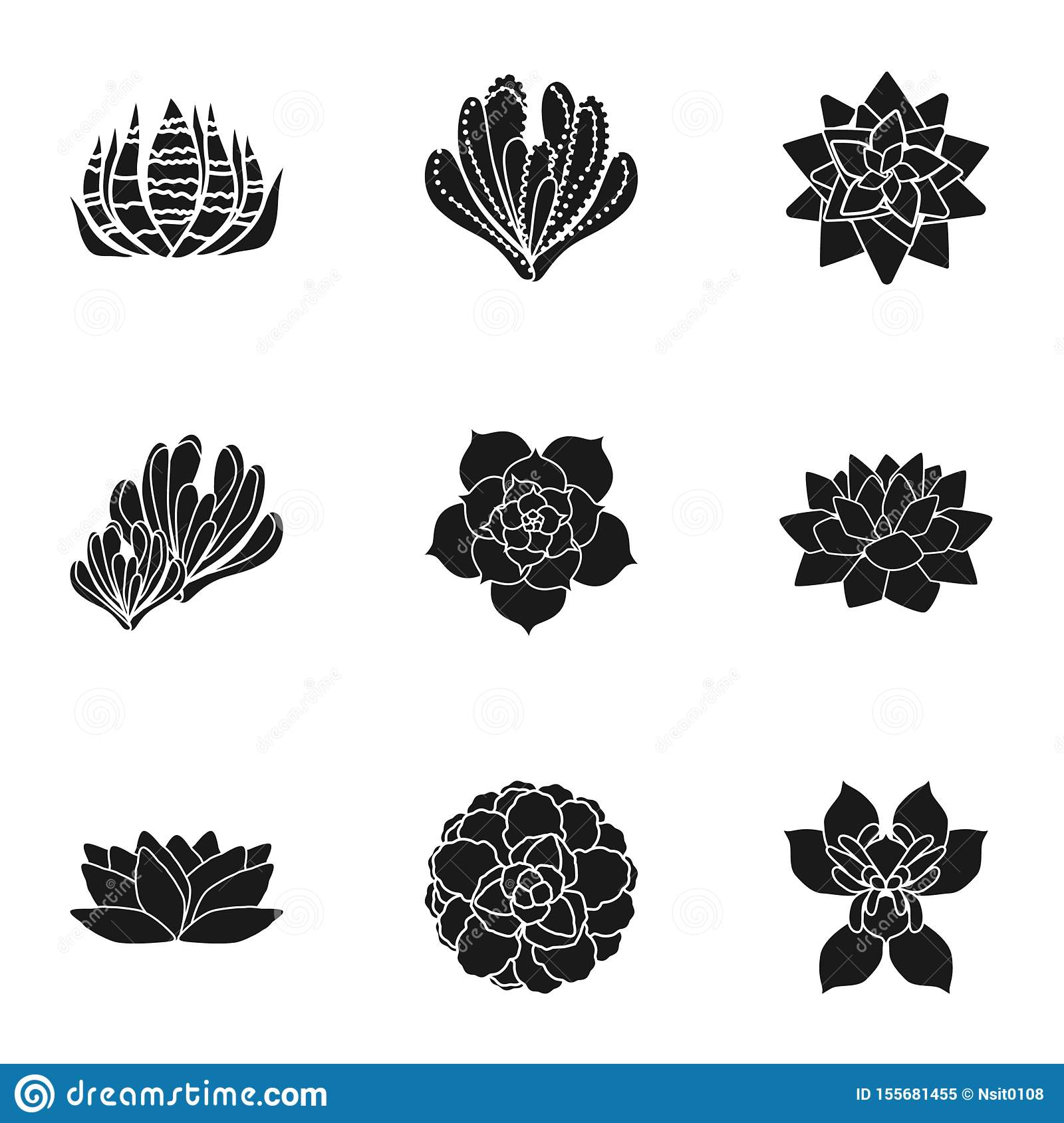 Cacti Succulent Icon Set Simple Style Stock Vector Illustration Of Drawing Collection 155681455
