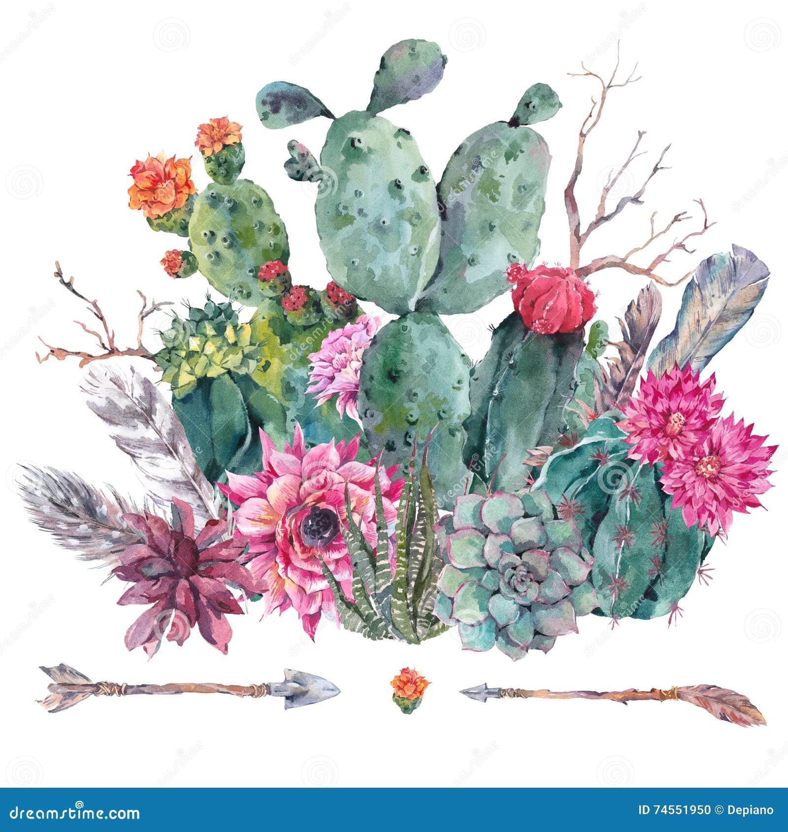 Cactus de la acuarela, succulent, flores