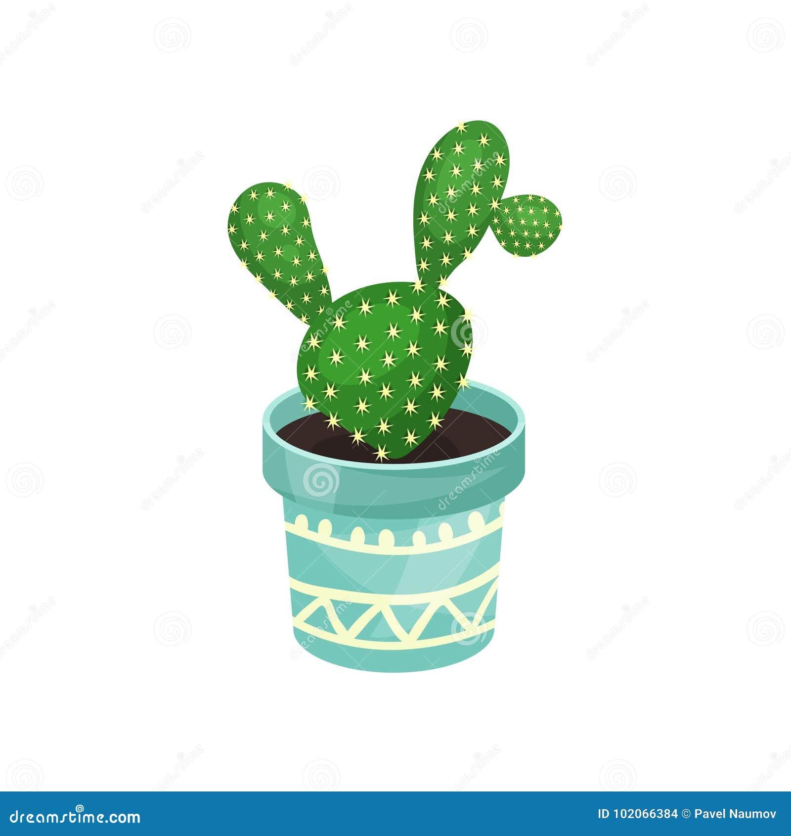 Arbre Fruitier En Pot Interieur cactus de plante d'intérieur d'opuntia, illustration mise en