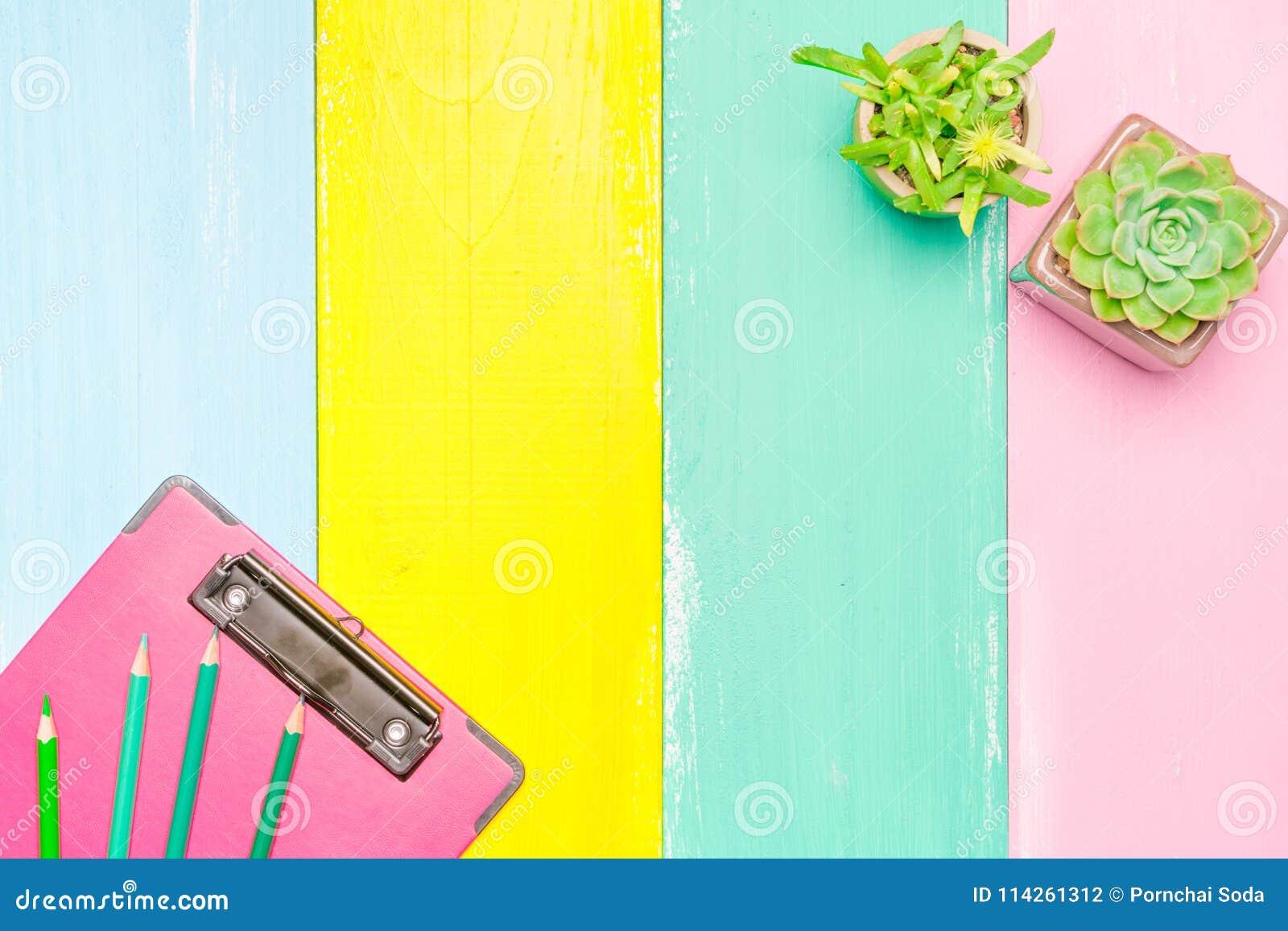Cactus en la opinión superior del pote y del tablero rosado sobre los fondos de madera coloridos con el espacio de la copia