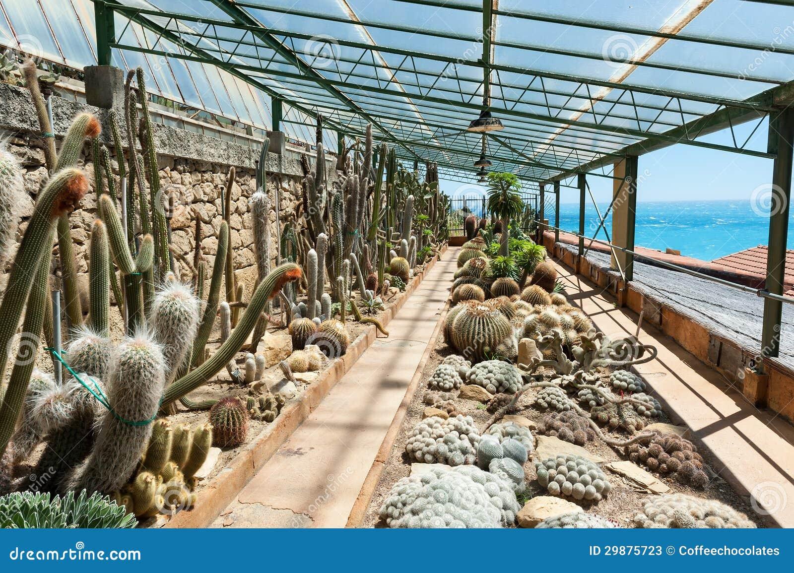 Garden Of Exotic Plants Pallanca Stock Photos Image