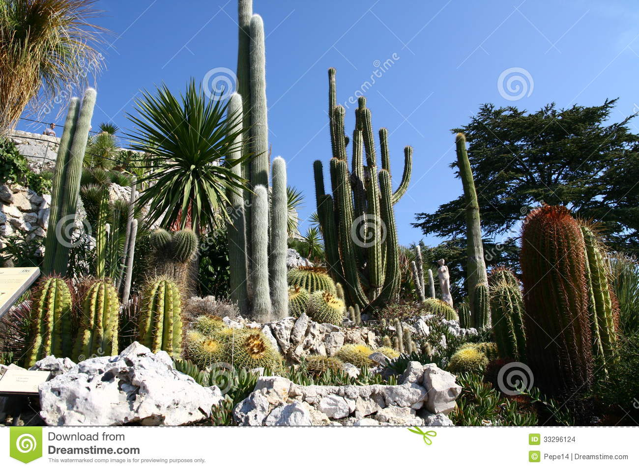 Cactus garden in eze village stock images image 33296124 for Eze jardin exotique statues