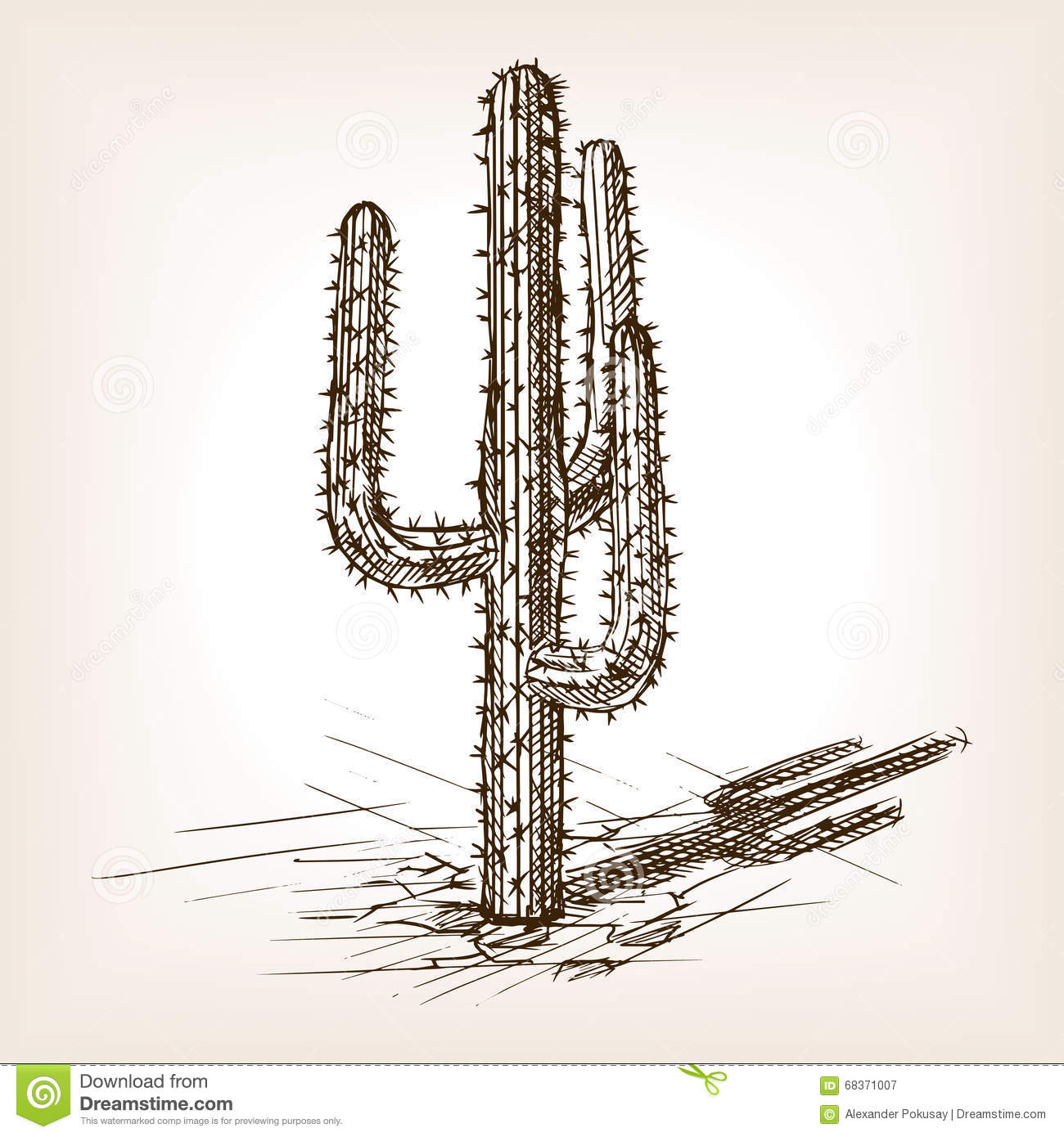 Cactus Hand Drawn Sketch Style Vector Stock Vector - Illustration Of Eating Plant 68371007