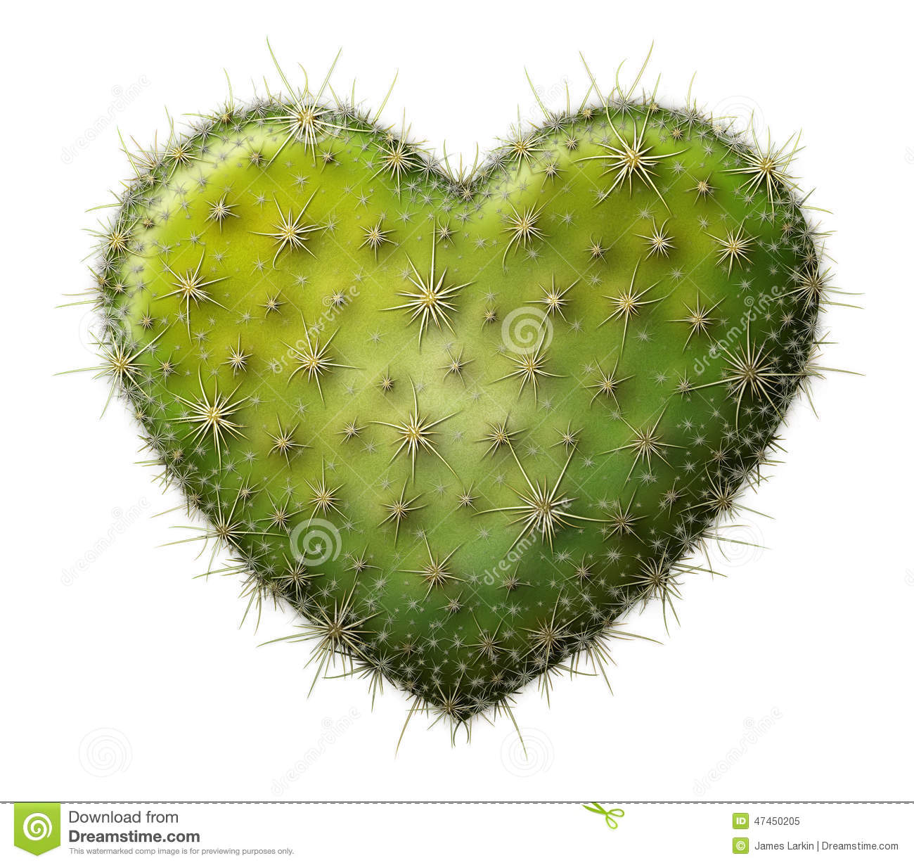 cactus heart stock photo image 47450205