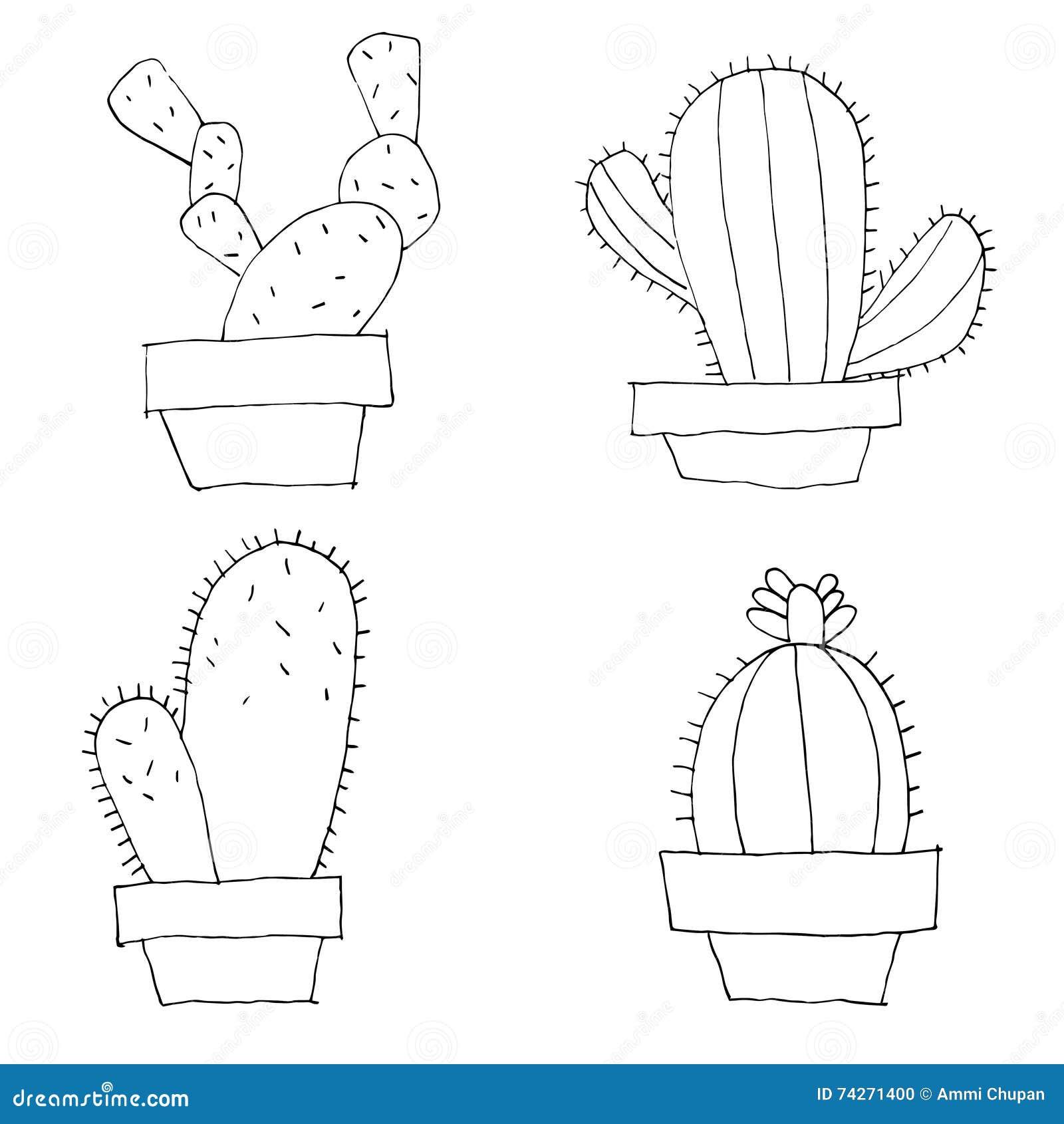 Line Drawing Cactus : Cactus illustration line art set black on white background