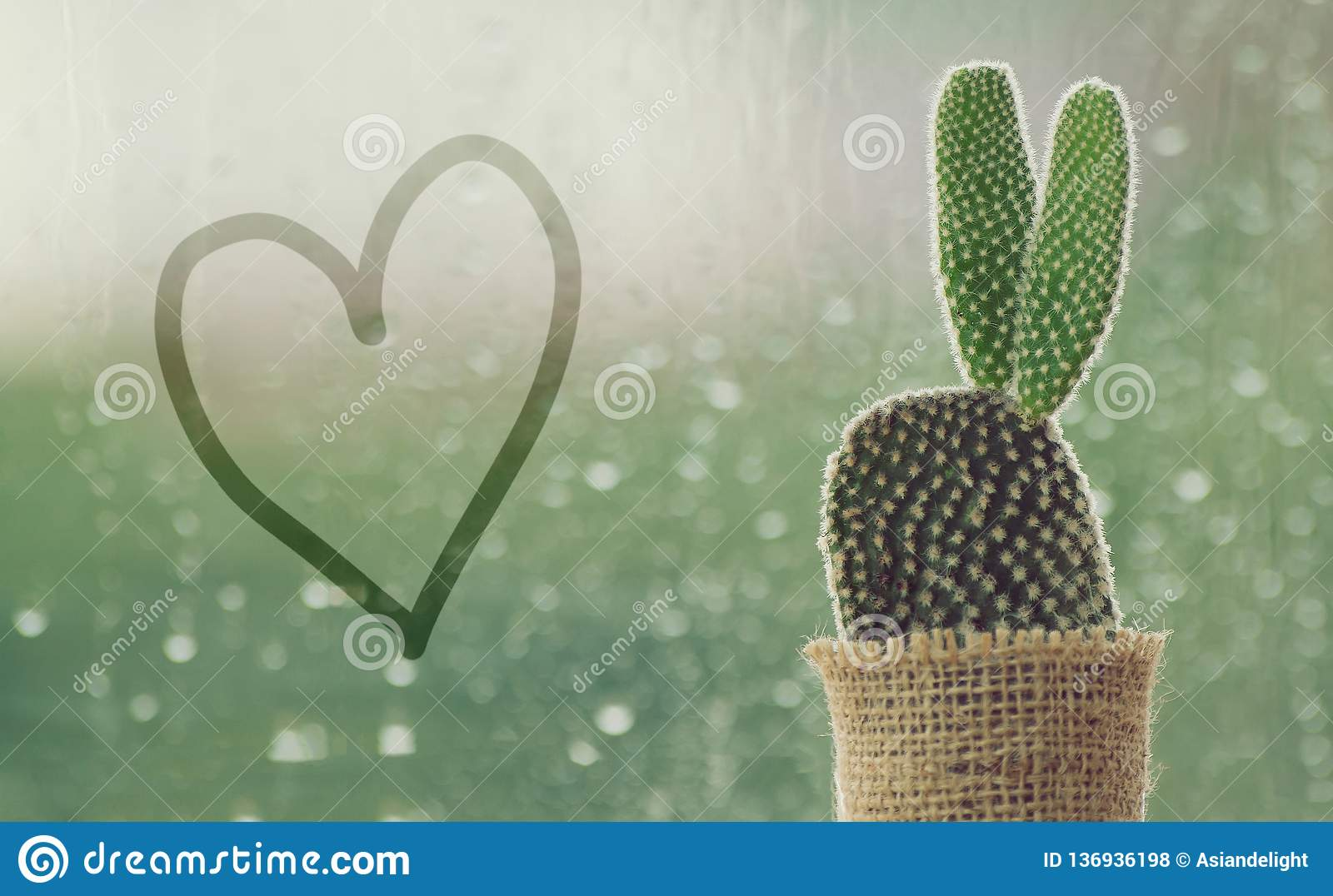 Cactus on a rainy day with handwriting heart shape on water drop at window background. drops of rain on window glass background