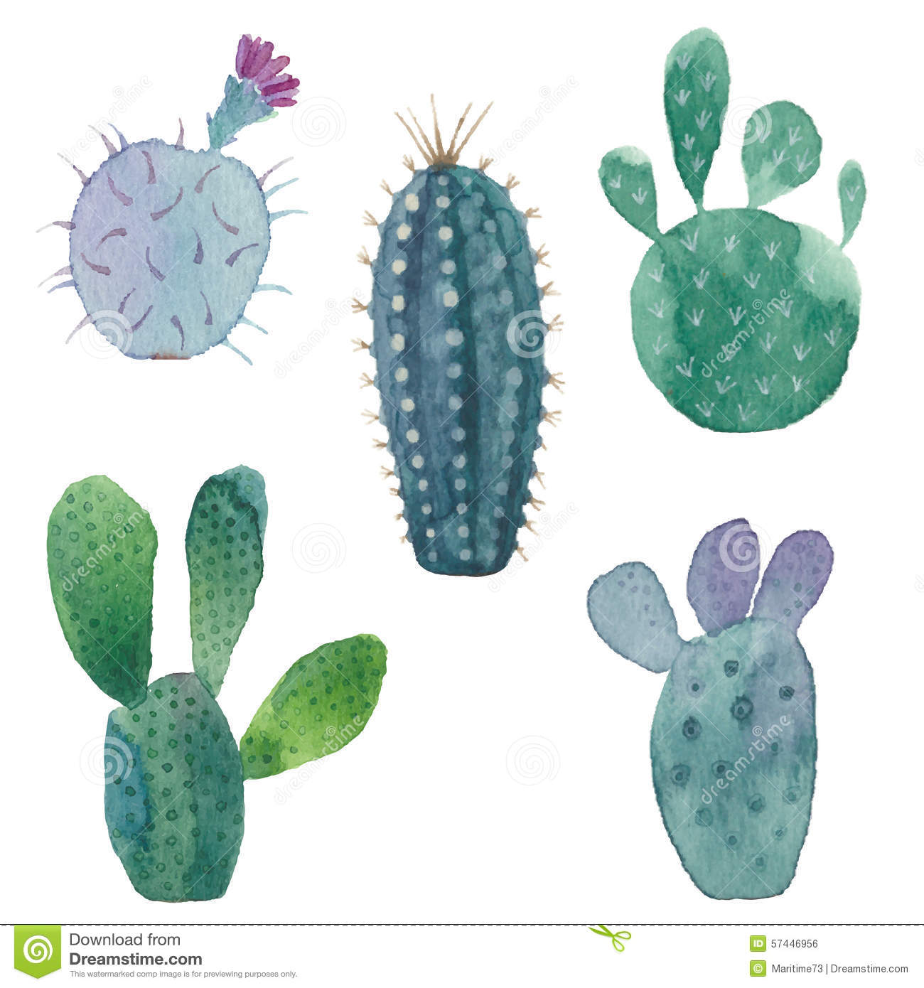 cactus seamless pattern on white background vector