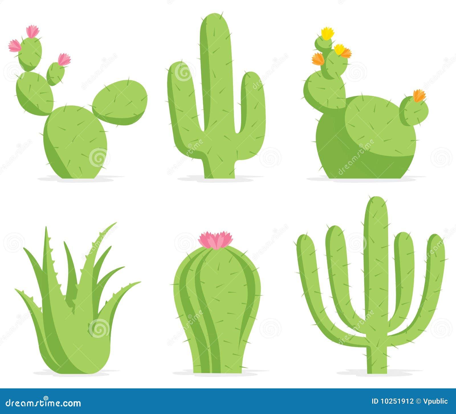 Cactus Cake Prices