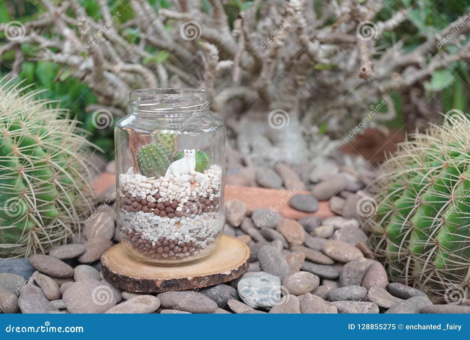 Cactus Terrarium Mini Succulent Garden In Glass Bottle Terrarium