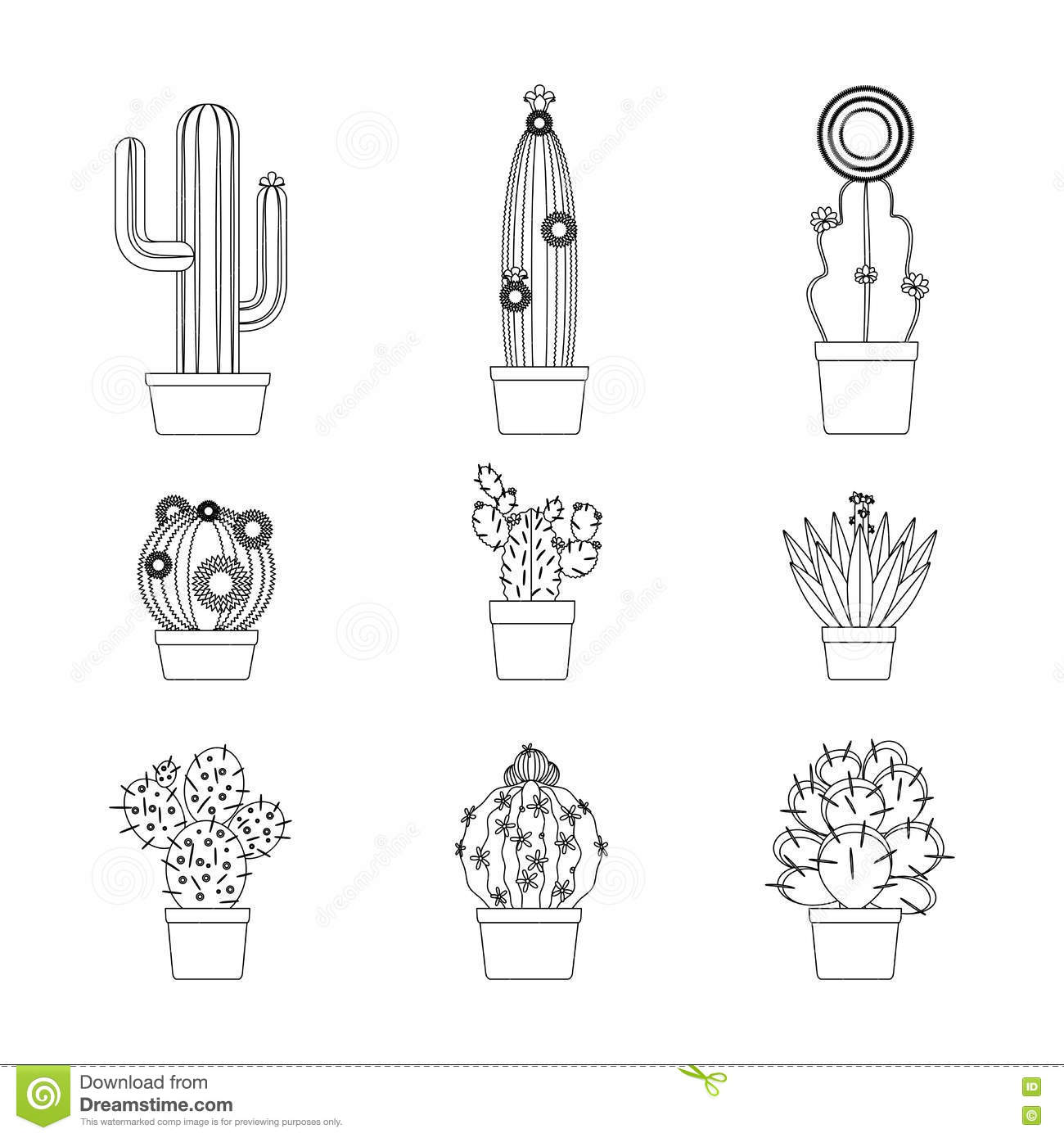 Vector Drawing Lines Kindergarten : Cactus thin line icon set stock vector image