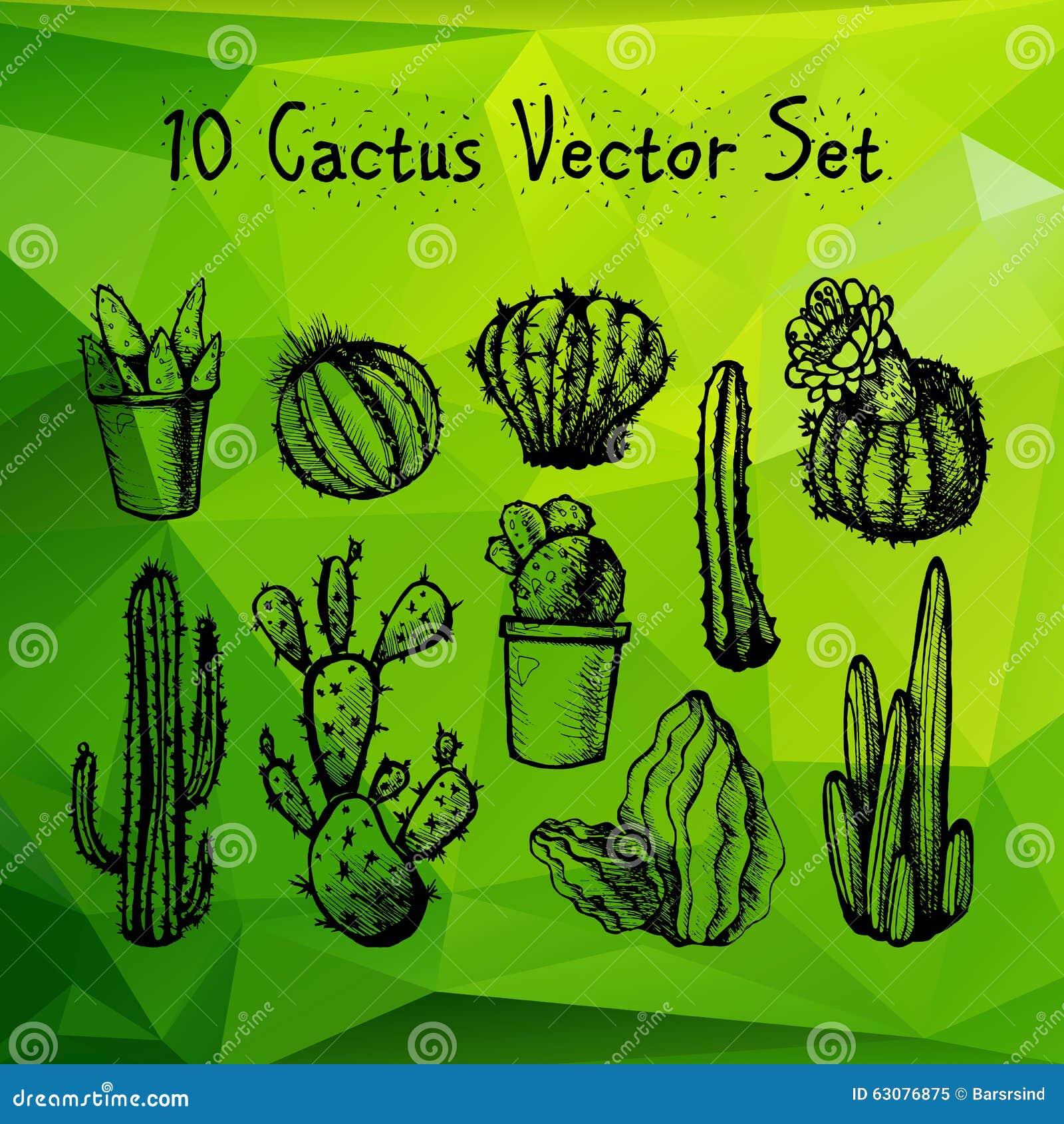 Download Cactus Tirés Par La Main Réglés Illustration Stock - Illustration du ramassage, buisson: 63076875