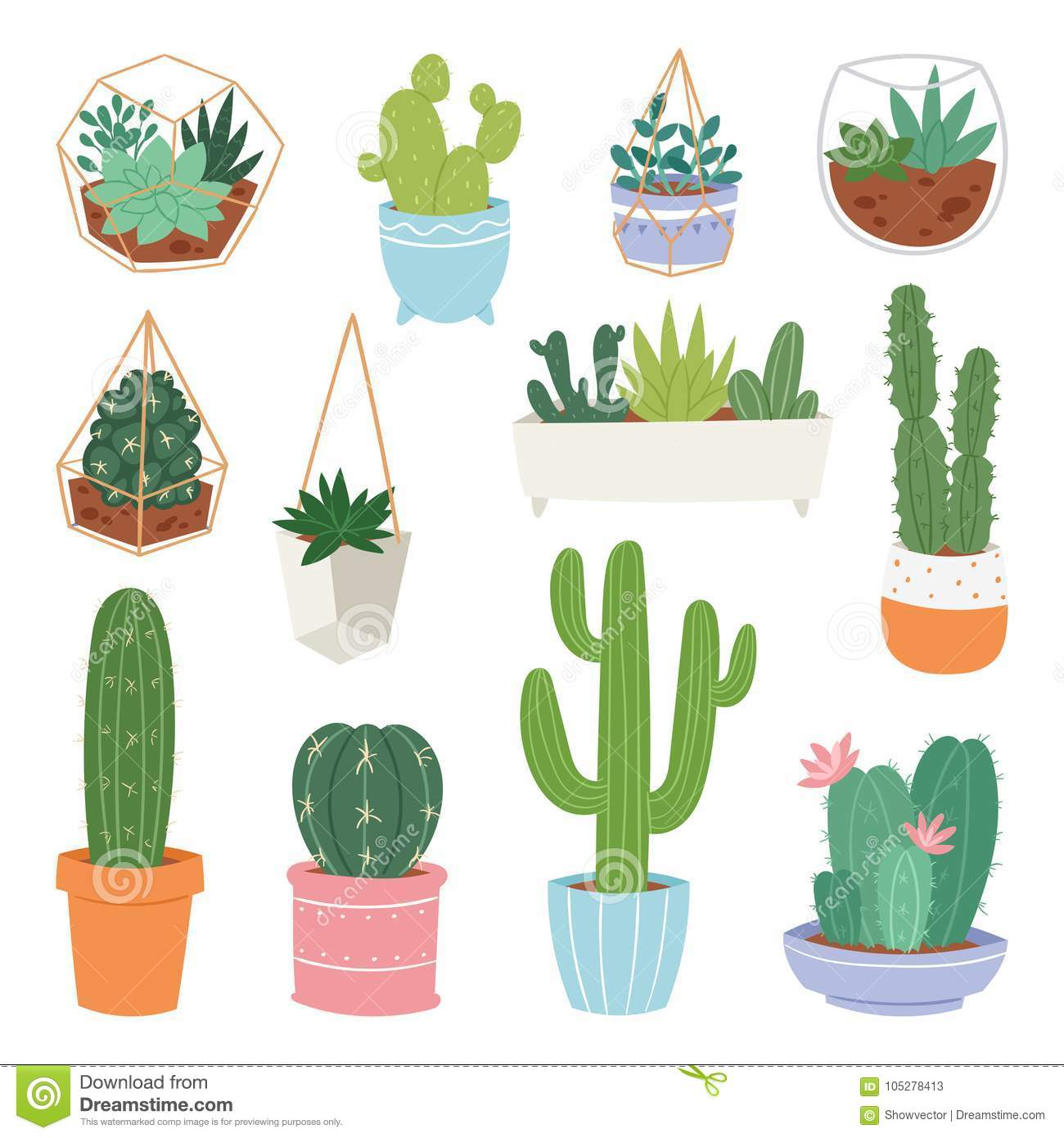 Cactus Vector Cartoon Botanical Cacti Potted Cute Cactaceous Succulent Plant Botany Illustration Isolated On White Stock Vector Illustration Of Cacti Cactus 105278413